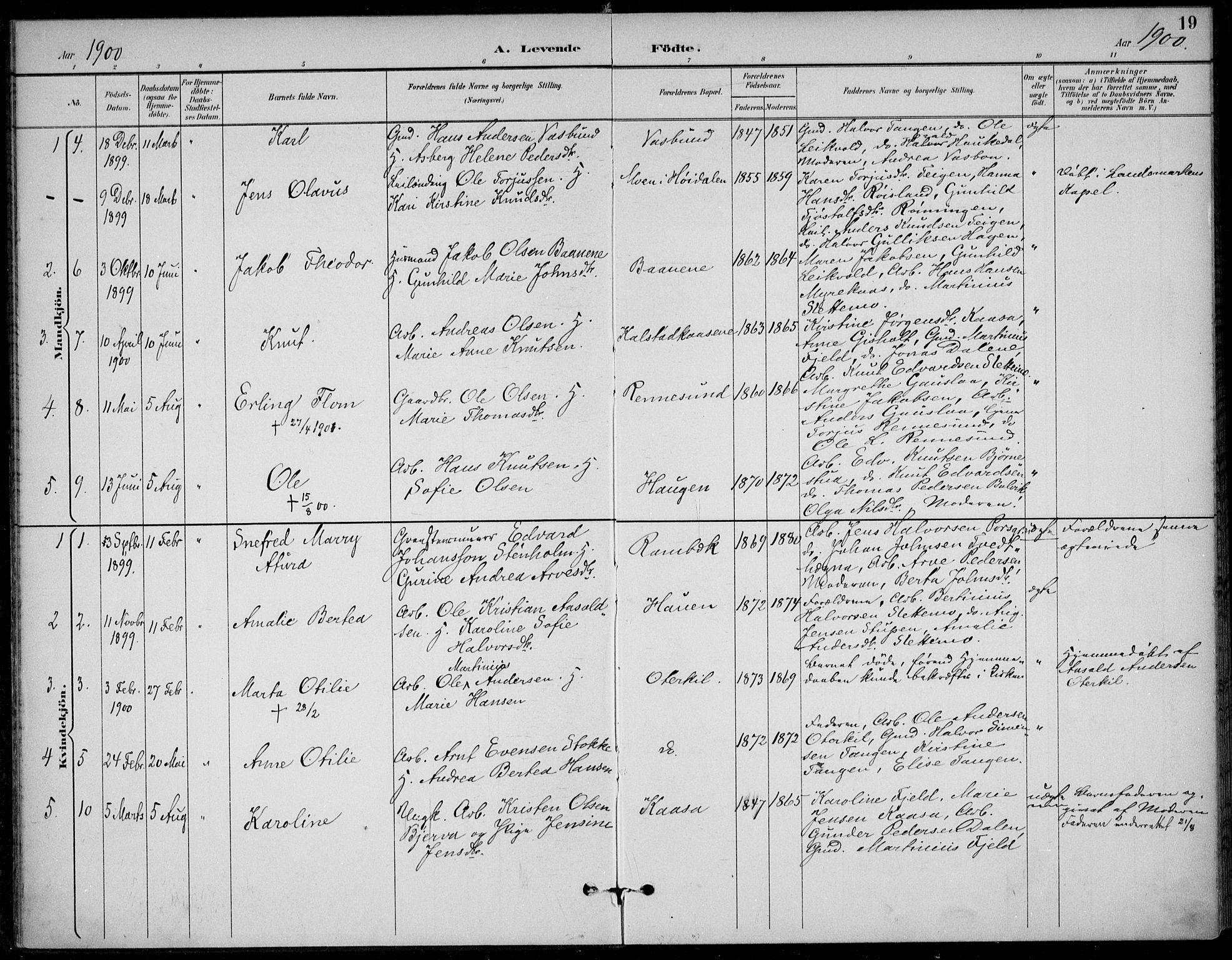 SAKO, Solum kirkebøker, F/Fc/L0002: Ministerialbok nr. III 2, 1892-1906, s. 19