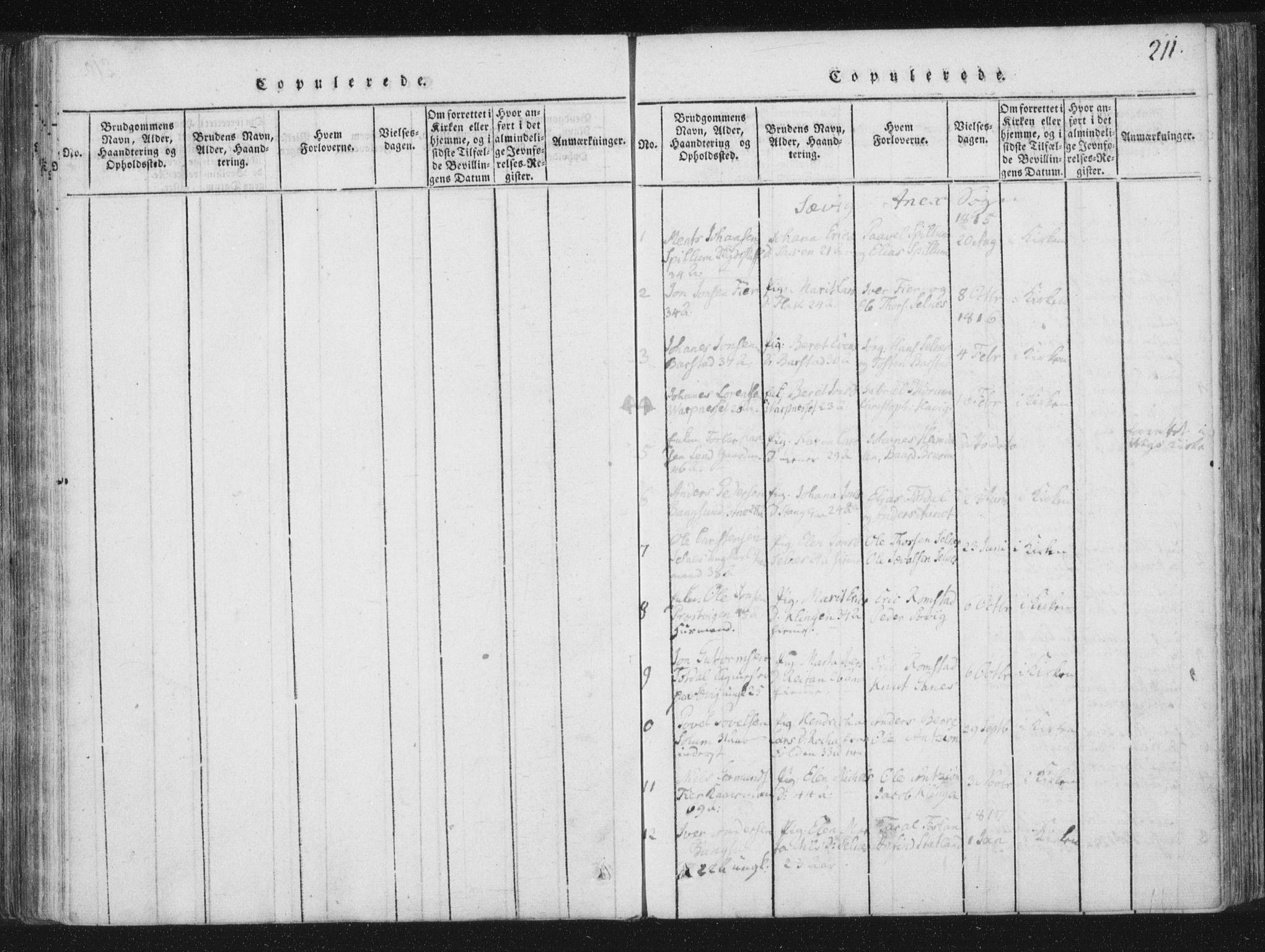 SAT, Ministerialprotokoller, klokkerbøker og fødselsregistre - Nord-Trøndelag, 773/L0609: Ministerialbok nr. 773A03 /4, 1815-1818, s. 211