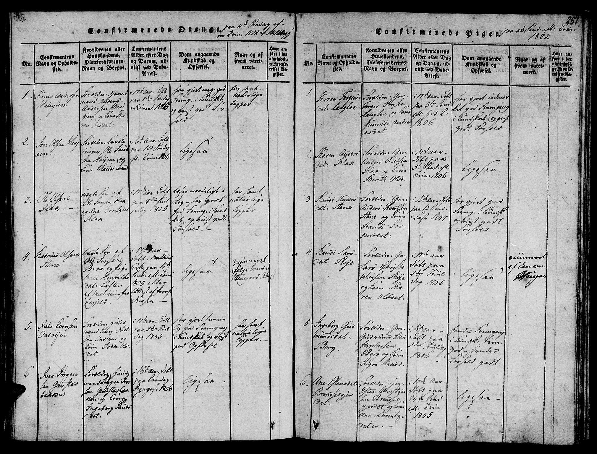 SAT, Ministerialprotokoller, klokkerbøker og fødselsregistre - Sør-Trøndelag, 612/L0372: Ministerialbok nr. 612A06 /1, 1816-1828, s. 251