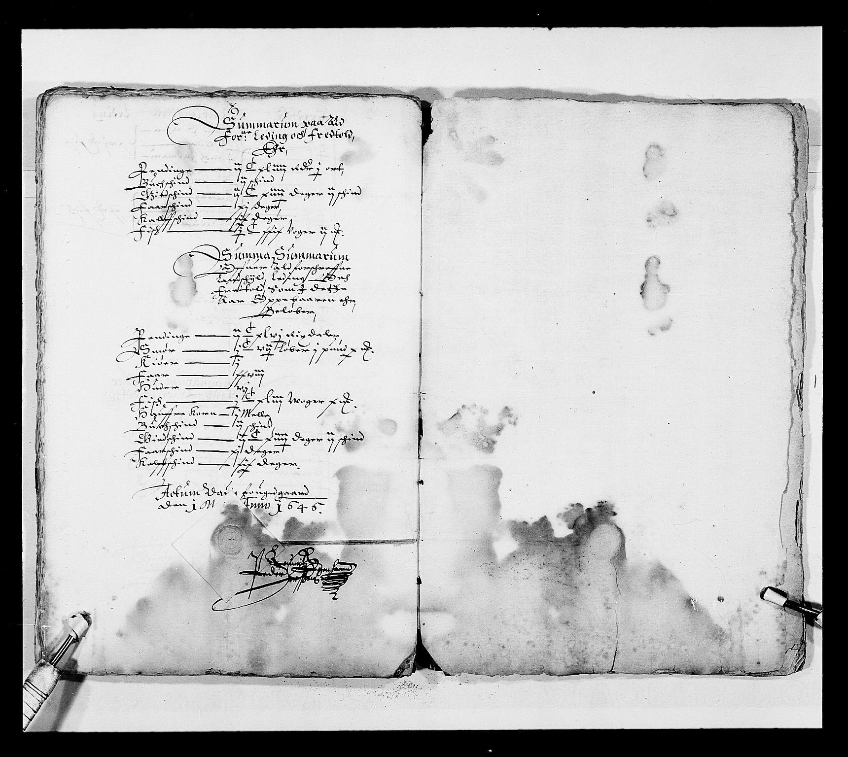 RA, Stattholderembetet 1572-1771, Ek/L0025: Jordebøker 1633-1658:, 1645-1646, s. 235