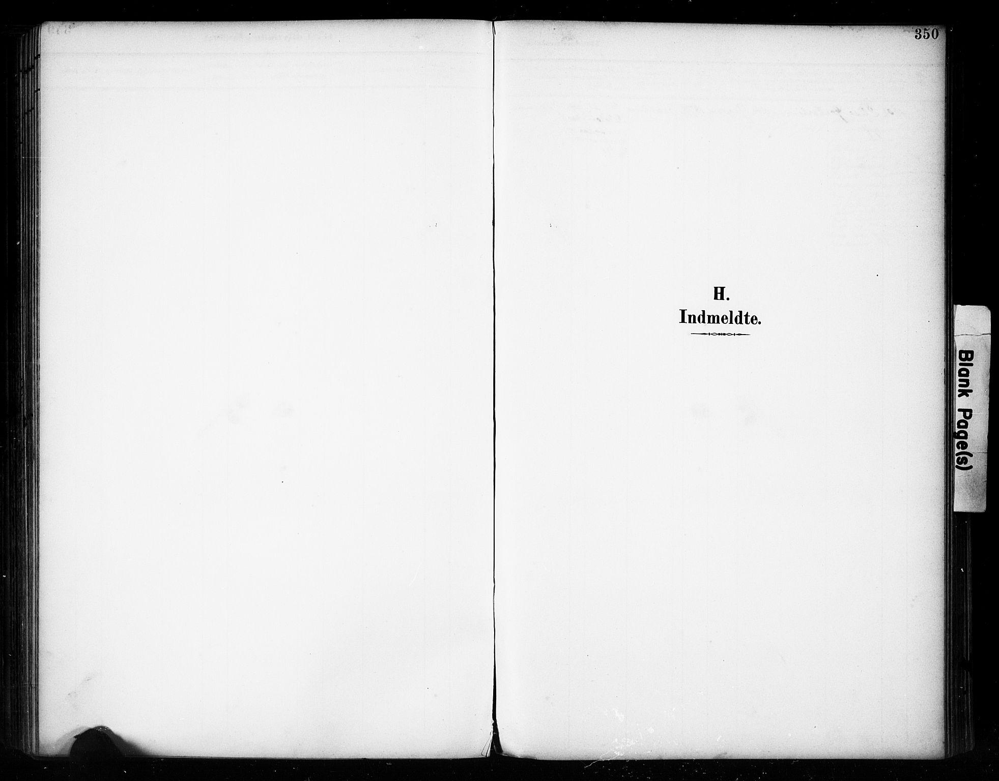 SAH, Vestre Toten prestekontor, H/Ha/Haa/L0011: Ministerialbok nr. 11, 1895-1906, s. 350