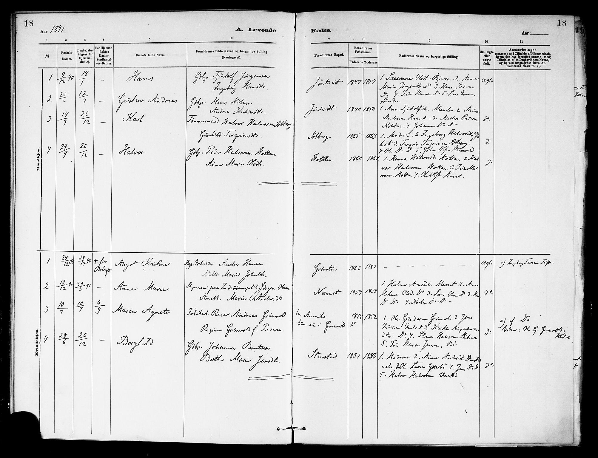 SAKO, Holla kirkebøker, F/Fa/L0009: Ministerialbok nr. 9, 1881-1897, s. 18