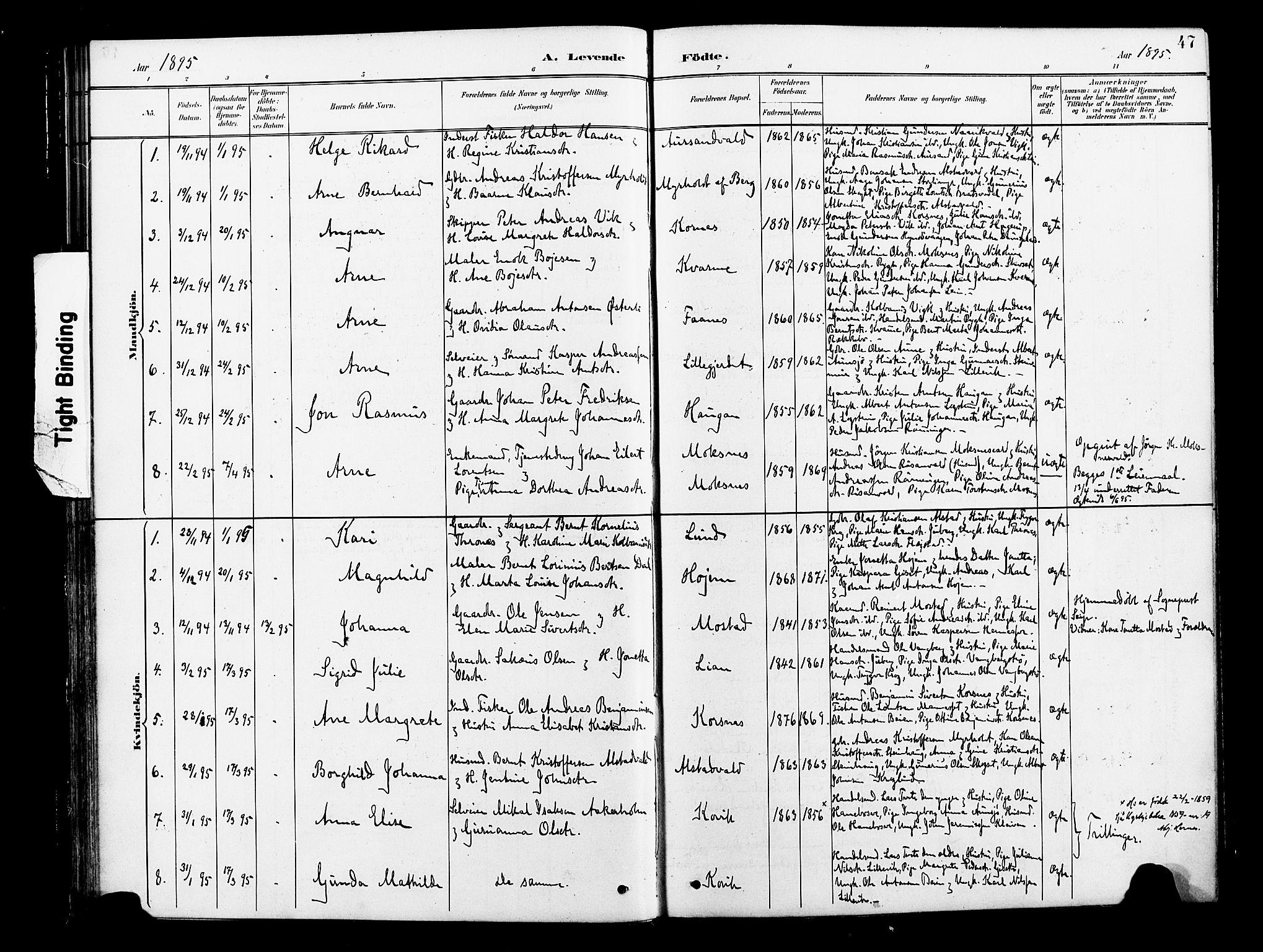 SAT, Ministerialprotokoller, klokkerbøker og fødselsregistre - Nord-Trøndelag, 713/L0121: Ministerialbok nr. 713A10, 1888-1898, s. 47