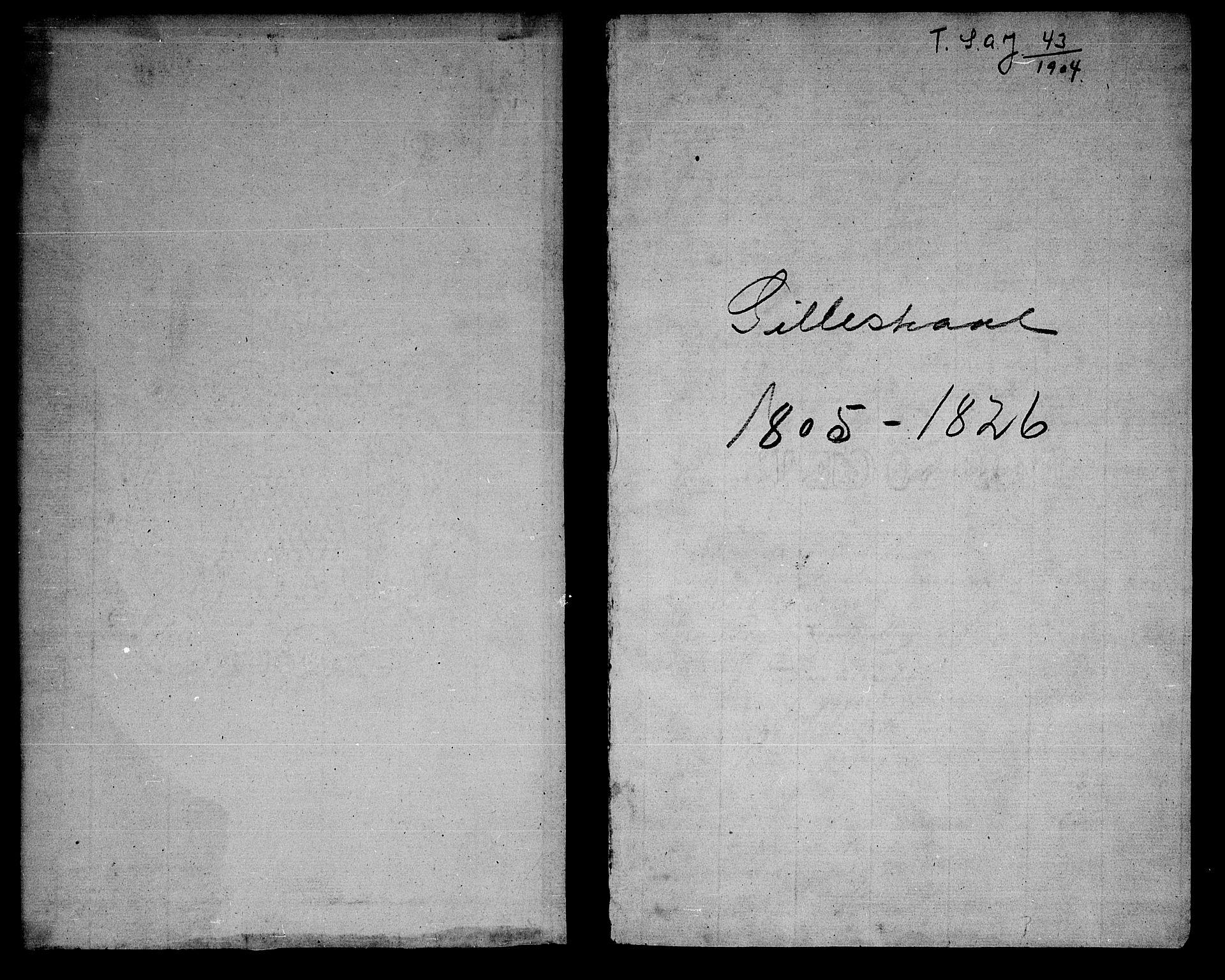 SAT, Ministerialprotokoller, klokkerbøker og fødselsregistre - Nordland, 805/L0095: Ministerialbok nr. 805A02, 1805-1826