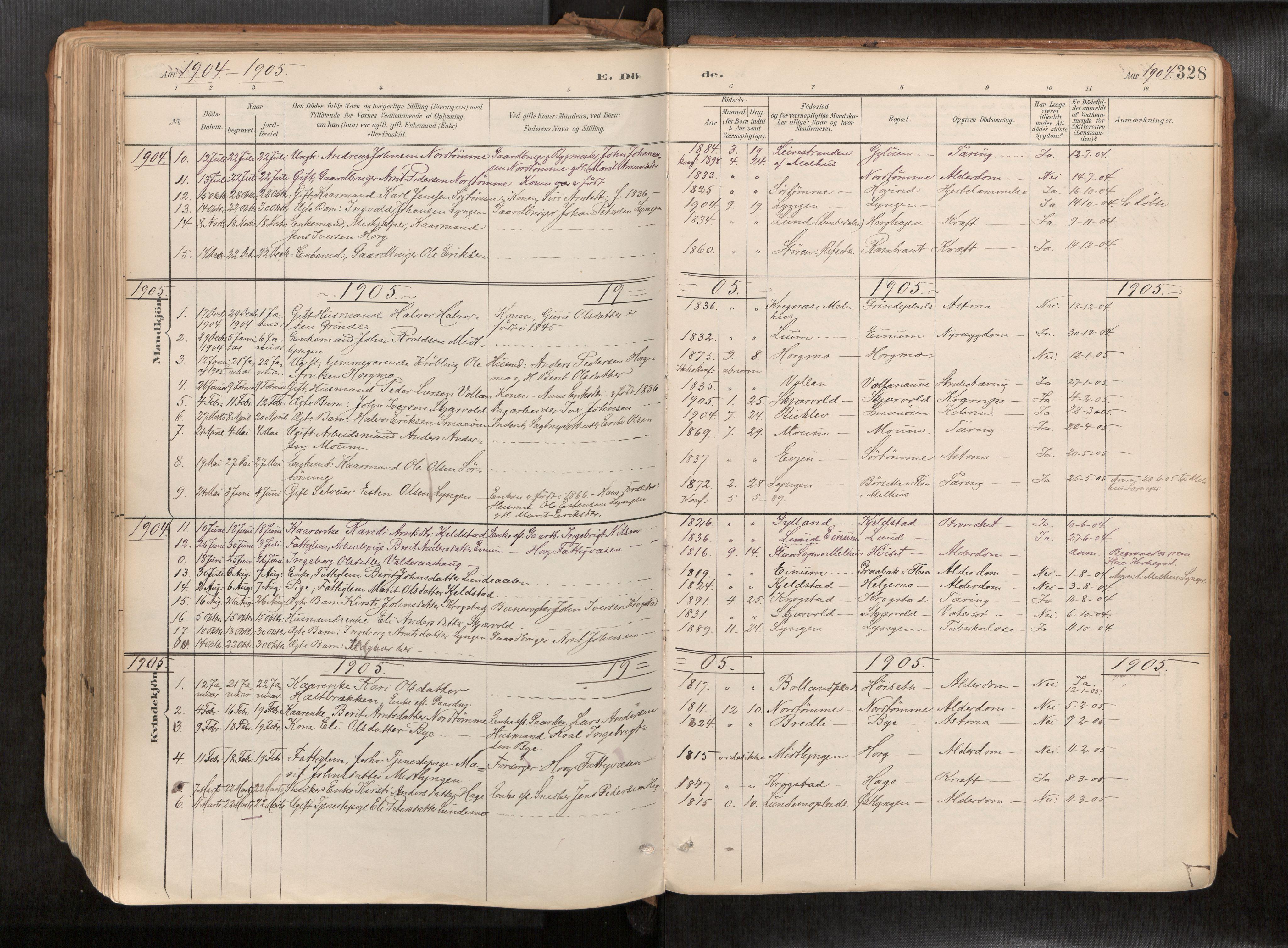 SAT, Ministerialprotokoller, klokkerbøker og fødselsregistre - Sør-Trøndelag, 692/L1105b: Ministerialbok nr. 692A06, 1891-1934, s. 328