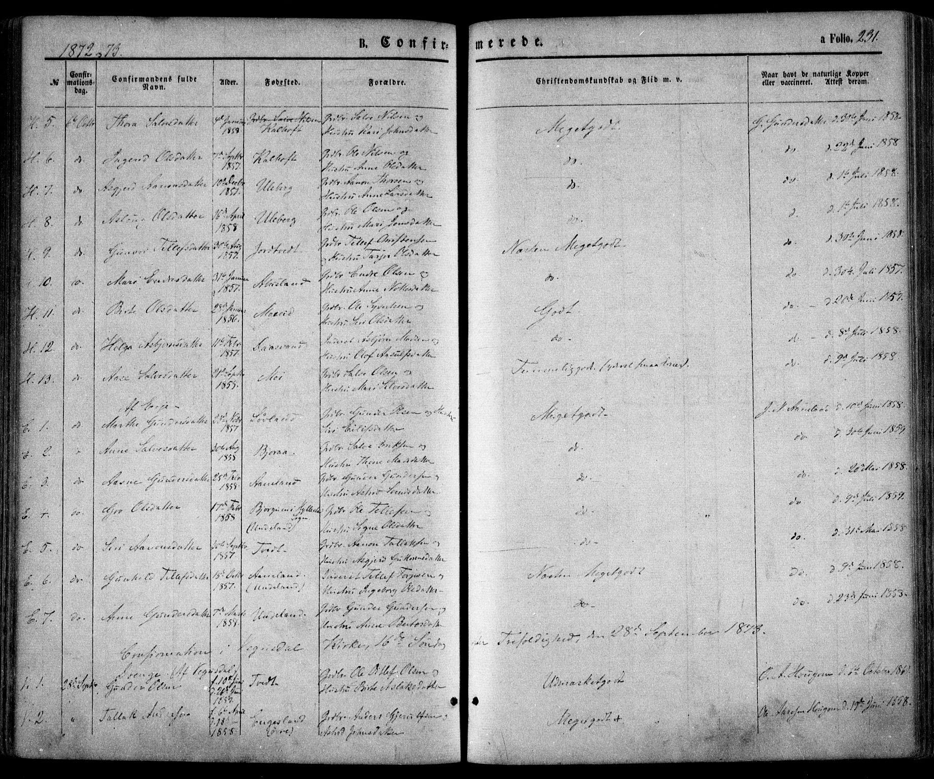 SAK, Evje sokneprestkontor, F/Fa/Faa/L0006: Ministerialbok nr. A 6, 1866-1884, s. 231