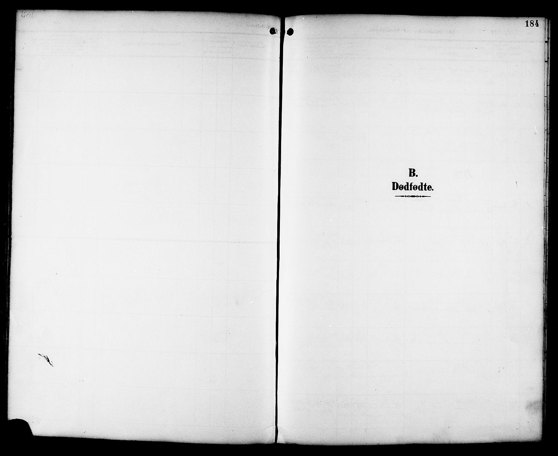 SAT, Ministerialprotokoller, klokkerbøker og fødselsregistre - Sør-Trøndelag, 659/L0746: Klokkerbok nr. 659C03, 1893-1912, s. 184