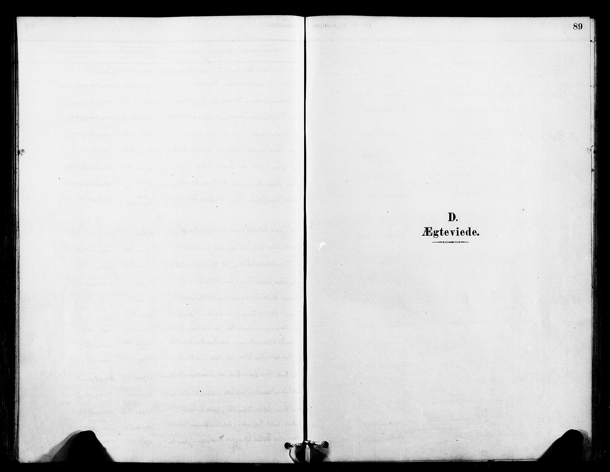 SAT, Ministerialprotokoller, klokkerbøker og fødselsregistre - Sør-Trøndelag, 641/L0595: Ministerialbok nr. 641A01, 1882-1897, s. 89