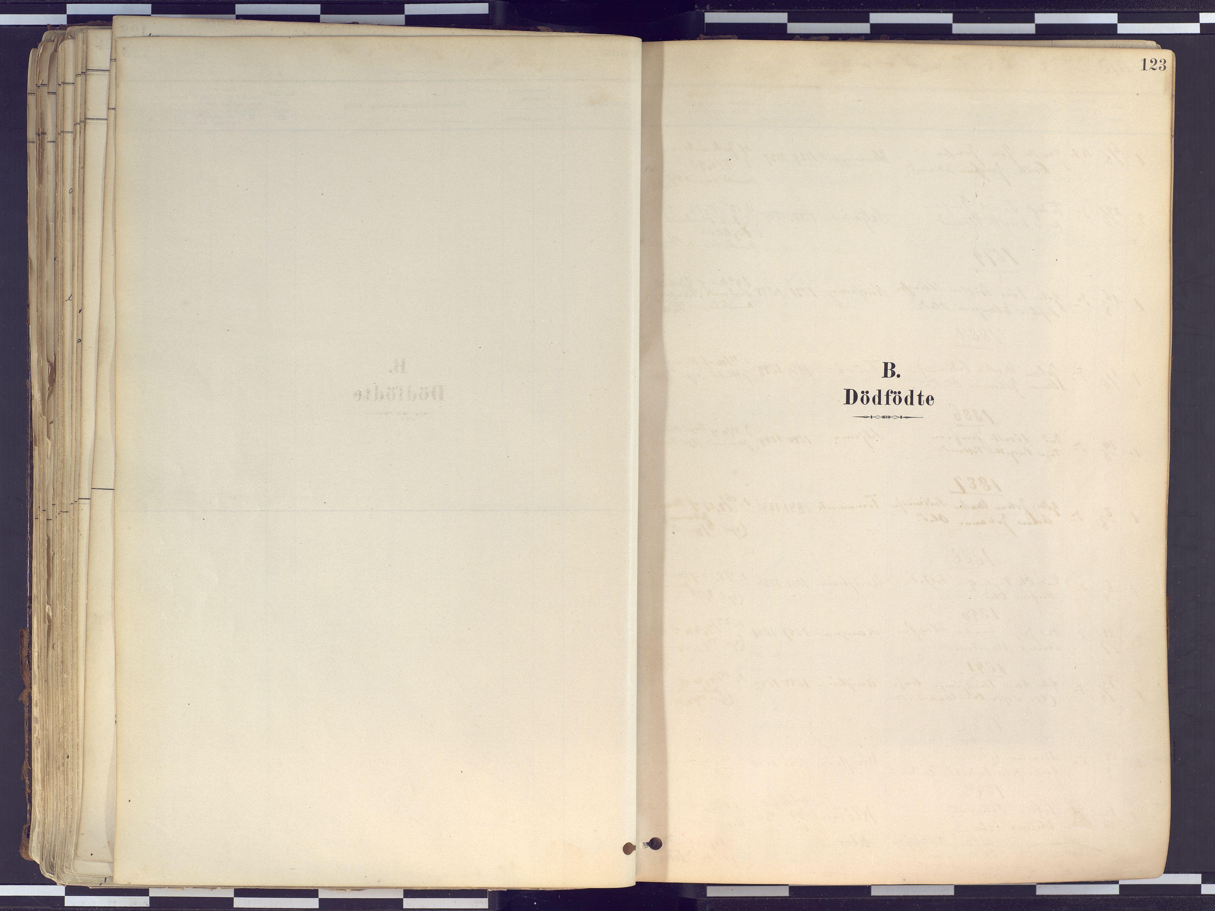 SATØ, Tranøy sokneprestkontor, I/Ia/Iaa/L0010kirke: Ministerialbok nr. 10, 1878-1904, s. 123