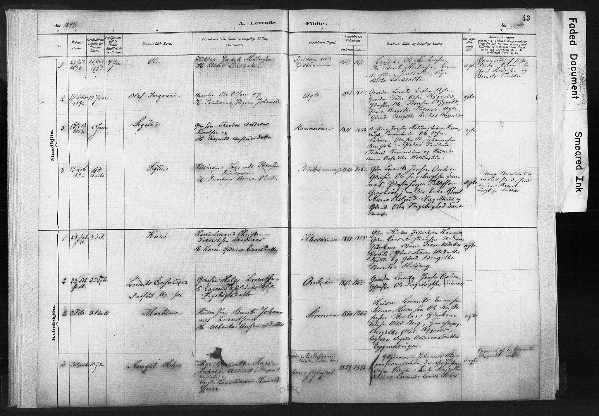 SAT, Ministerialprotokoller, klokkerbøker og fødselsregistre - Nord-Trøndelag, 749/L0474: Ministerialbok nr. 749A08, 1887-1903, s. 43