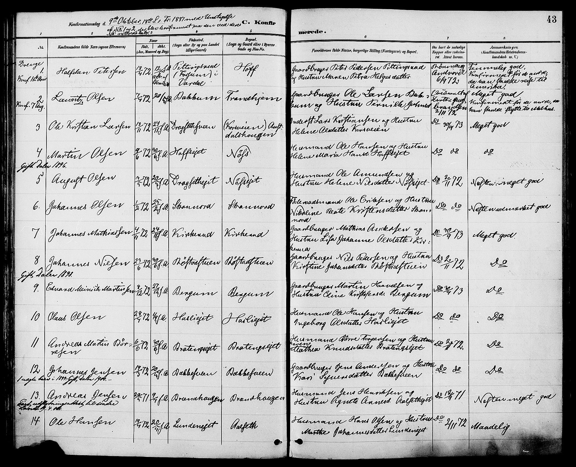 SAH, Biri prestekontor, Ministerialbok nr. 7, 1887-1893, s. 43