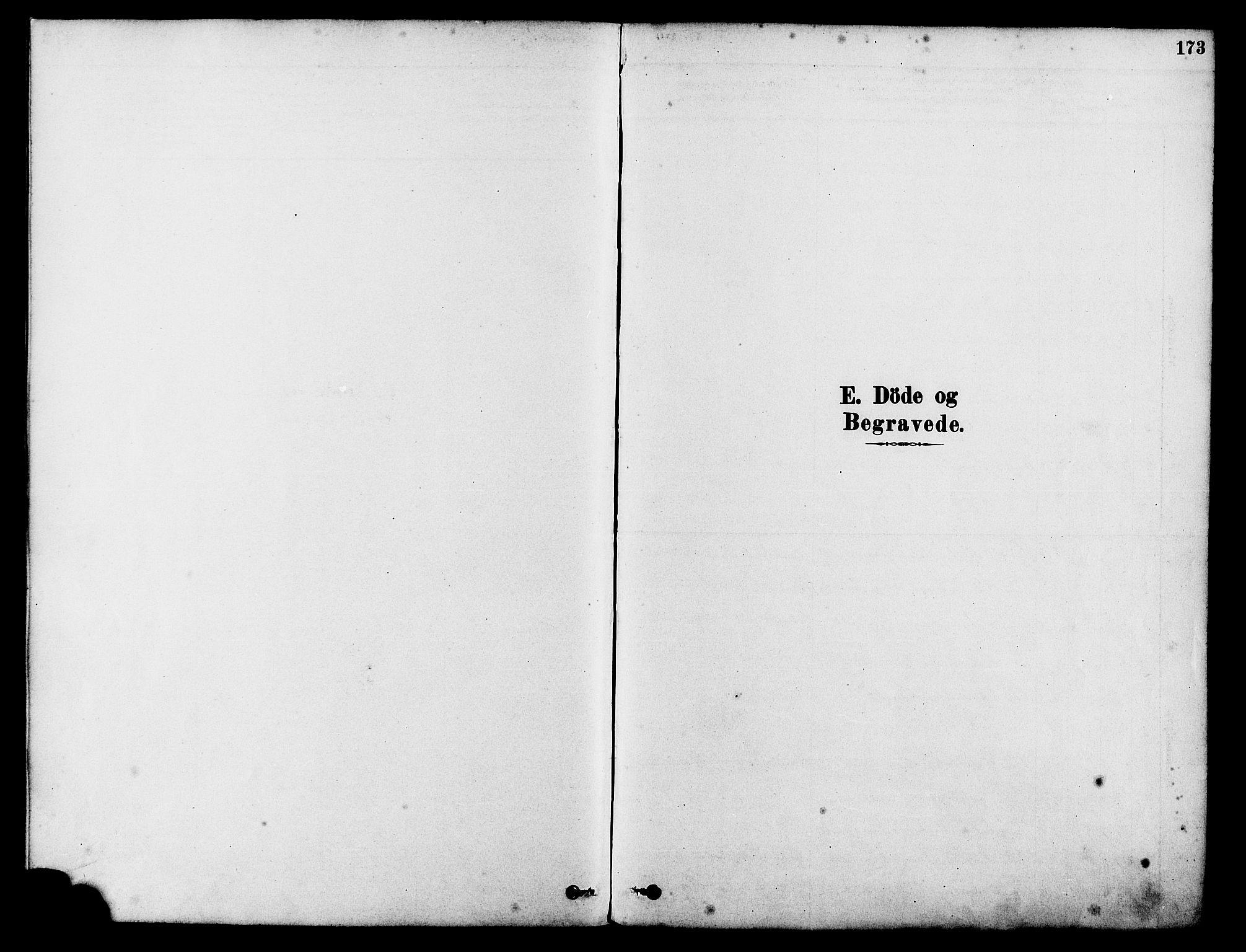 SAST, Tysvær sokneprestkontor, H/Ha/Haa/L0006: Ministerialbok nr. A 6, 1878-1896, s. 173