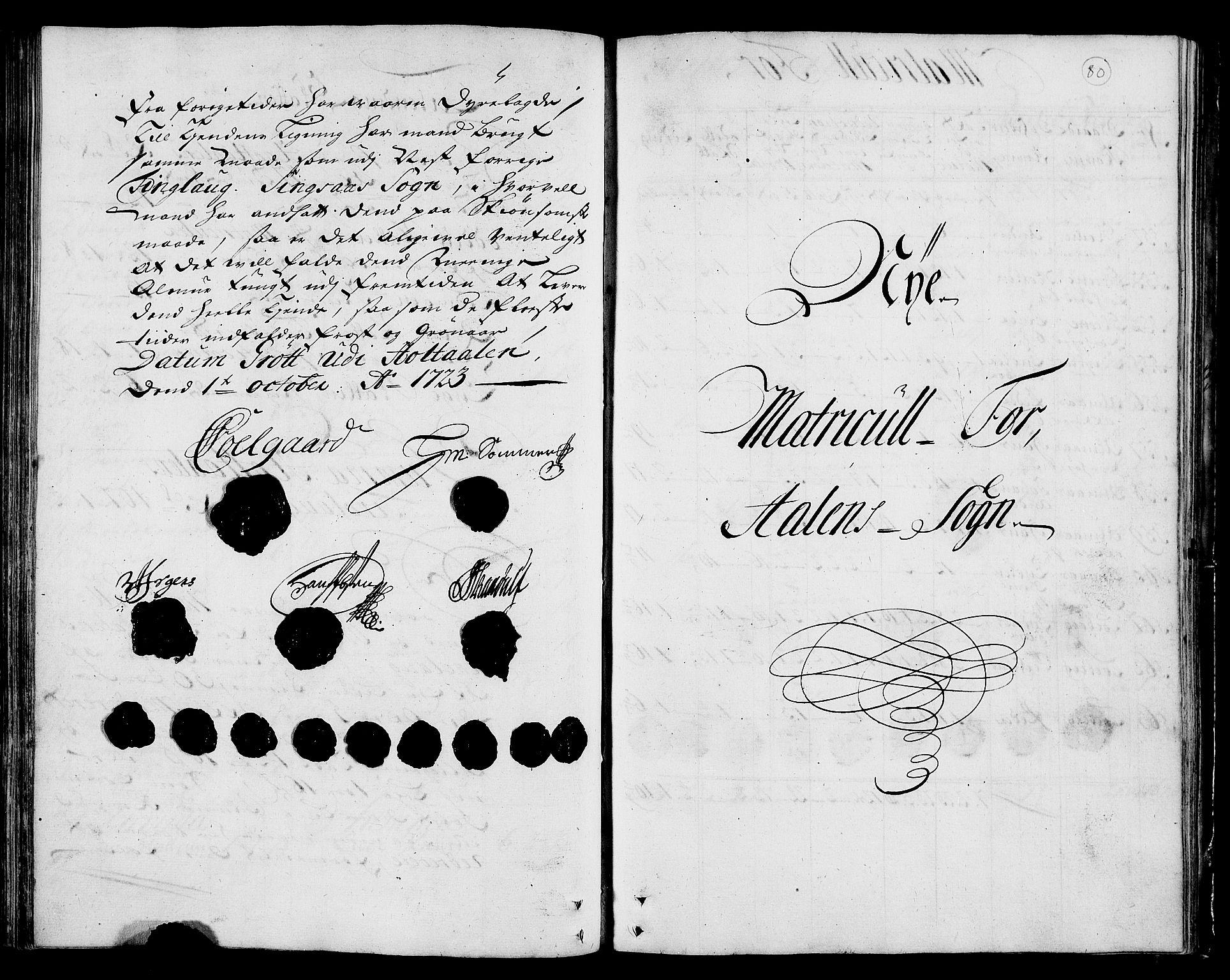 RA, Rentekammeret inntil 1814, Realistisk ordnet avdeling, N/Nb/Nbf/L0159: Gauldal matrikkelprotokoll, 1723, s. 79b-80a