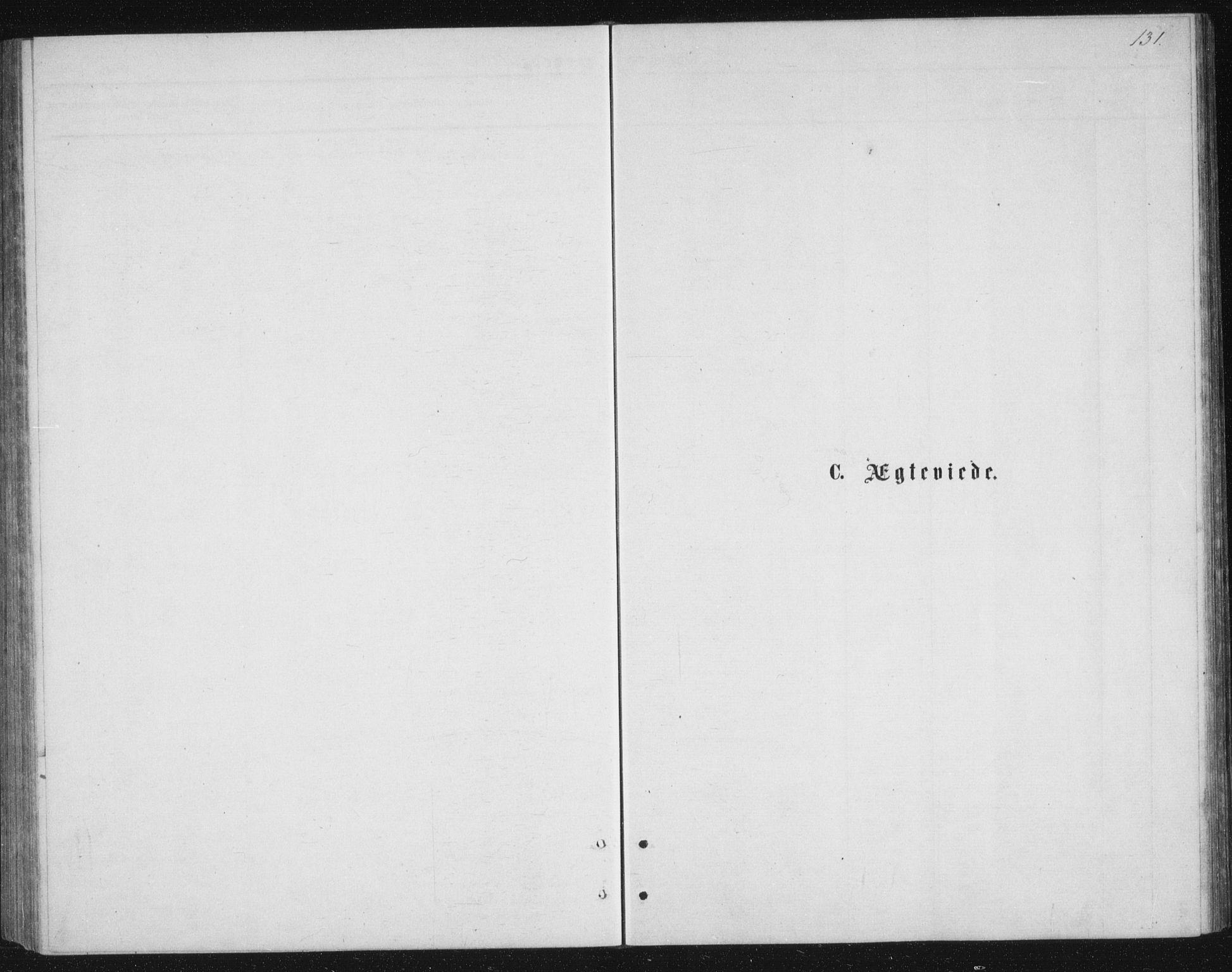 SATØ, Tranøy sokneprestkontor, I/Ia/Iab/L0013klokker: Klokkerbok nr. 13, 1874-1896, s. 131