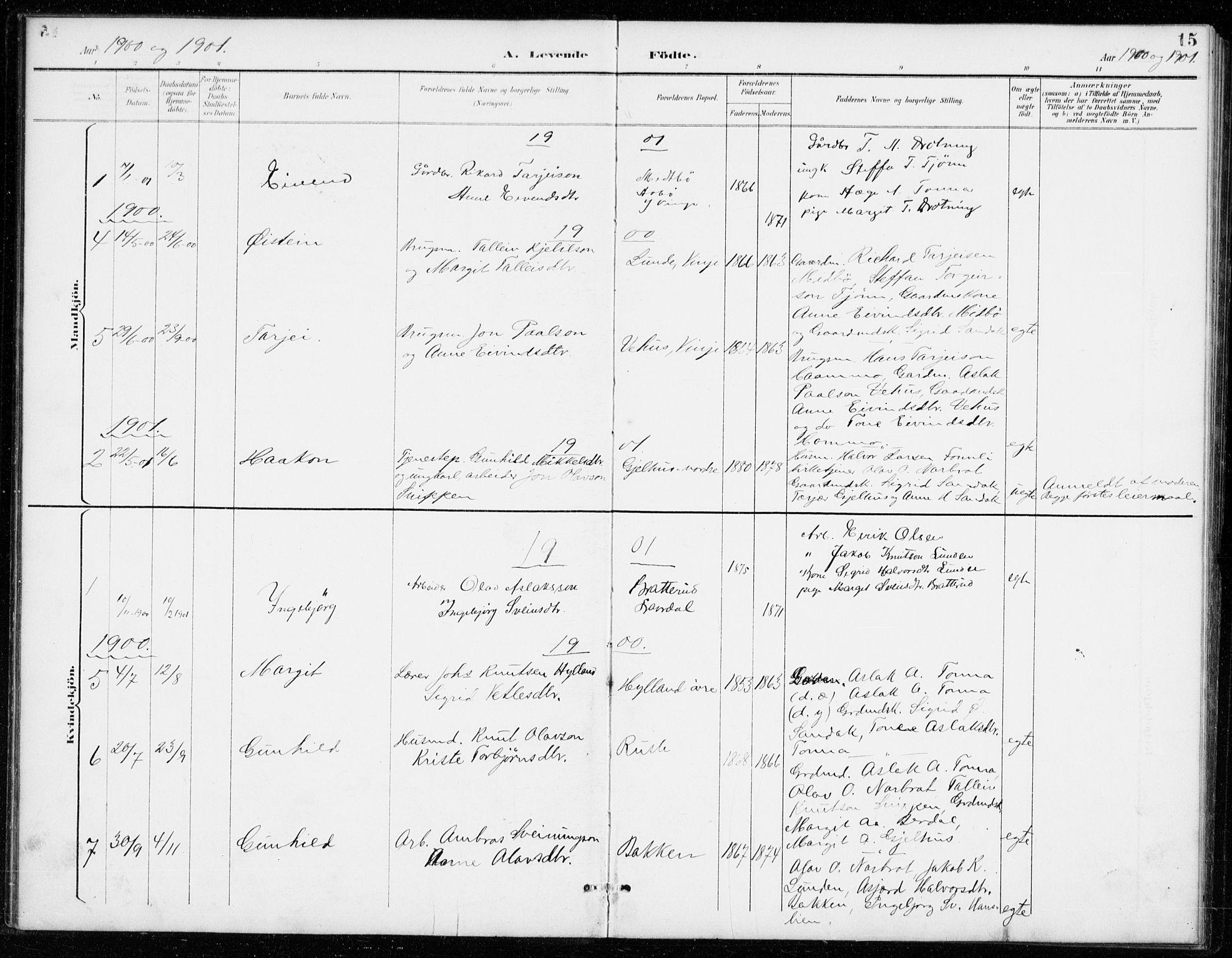 SAKO, Vinje kirkebøker, G/Gb/L0003: Klokkerbok nr. II 3, 1892-1943, s. 15