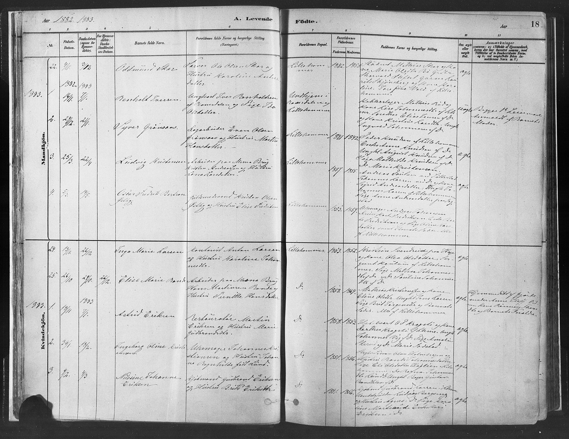 SAH, Fåberg prestekontor, Ministerialbok nr. 10, 1879-1900, s. 18