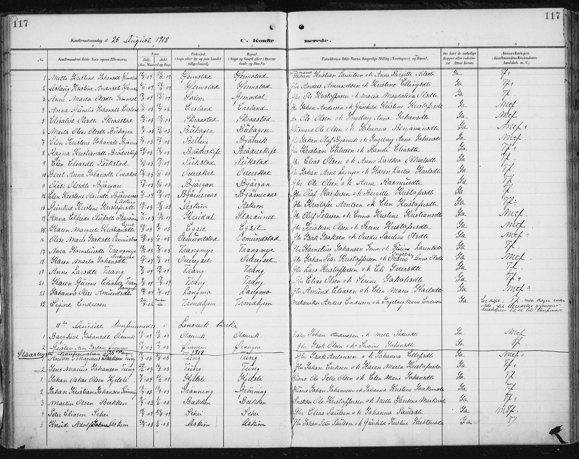 SAT, Ministerialprotokoller, klokkerbøker og fødselsregistre - Sør-Trøndelag, 646/L0616: Ministerialbok nr. 646A14, 1900-1918, s. 117