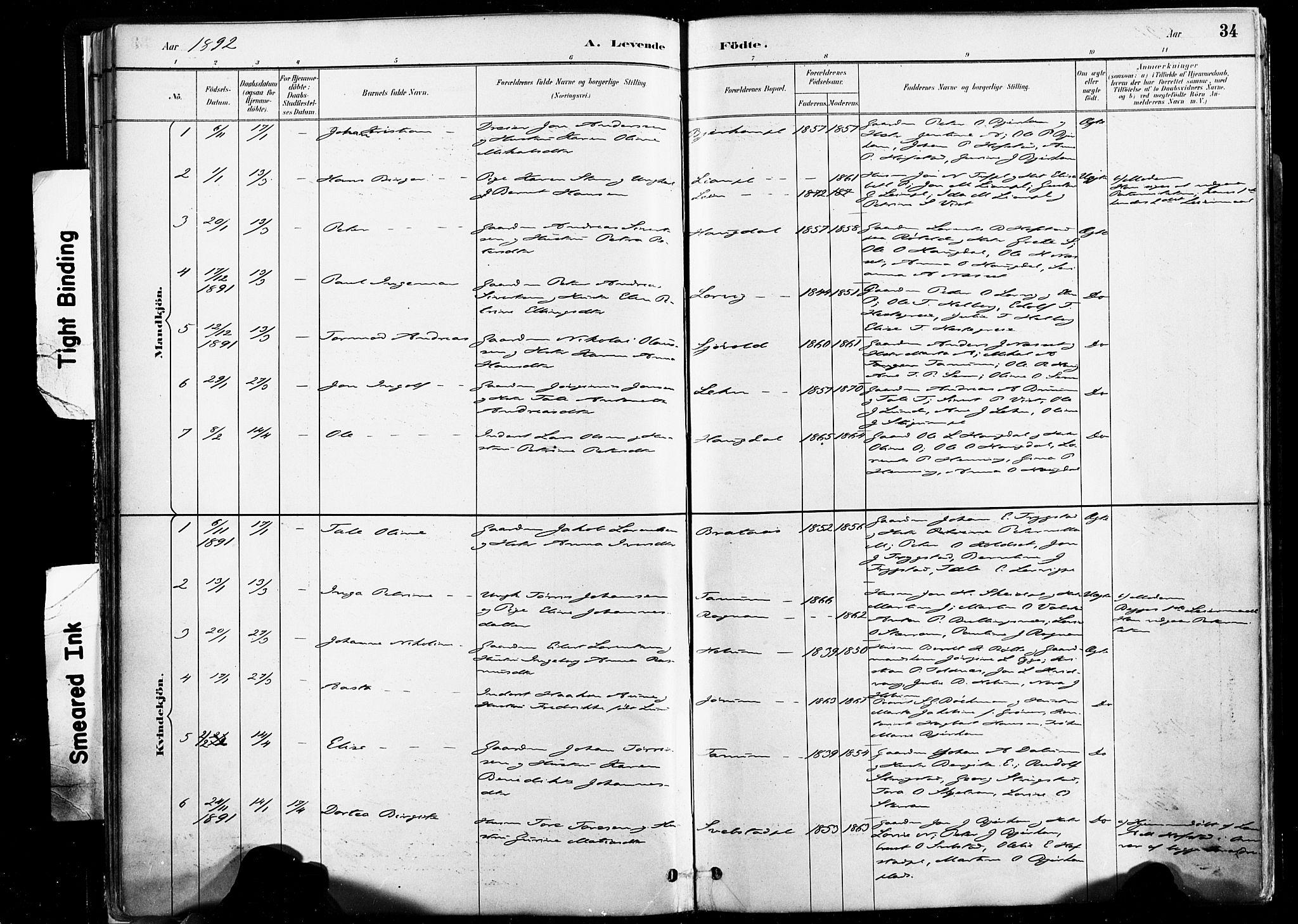 SAT, Ministerialprotokoller, klokkerbøker og fødselsregistre - Nord-Trøndelag, 735/L0351: Ministerialbok nr. 735A10, 1884-1908, s. 34