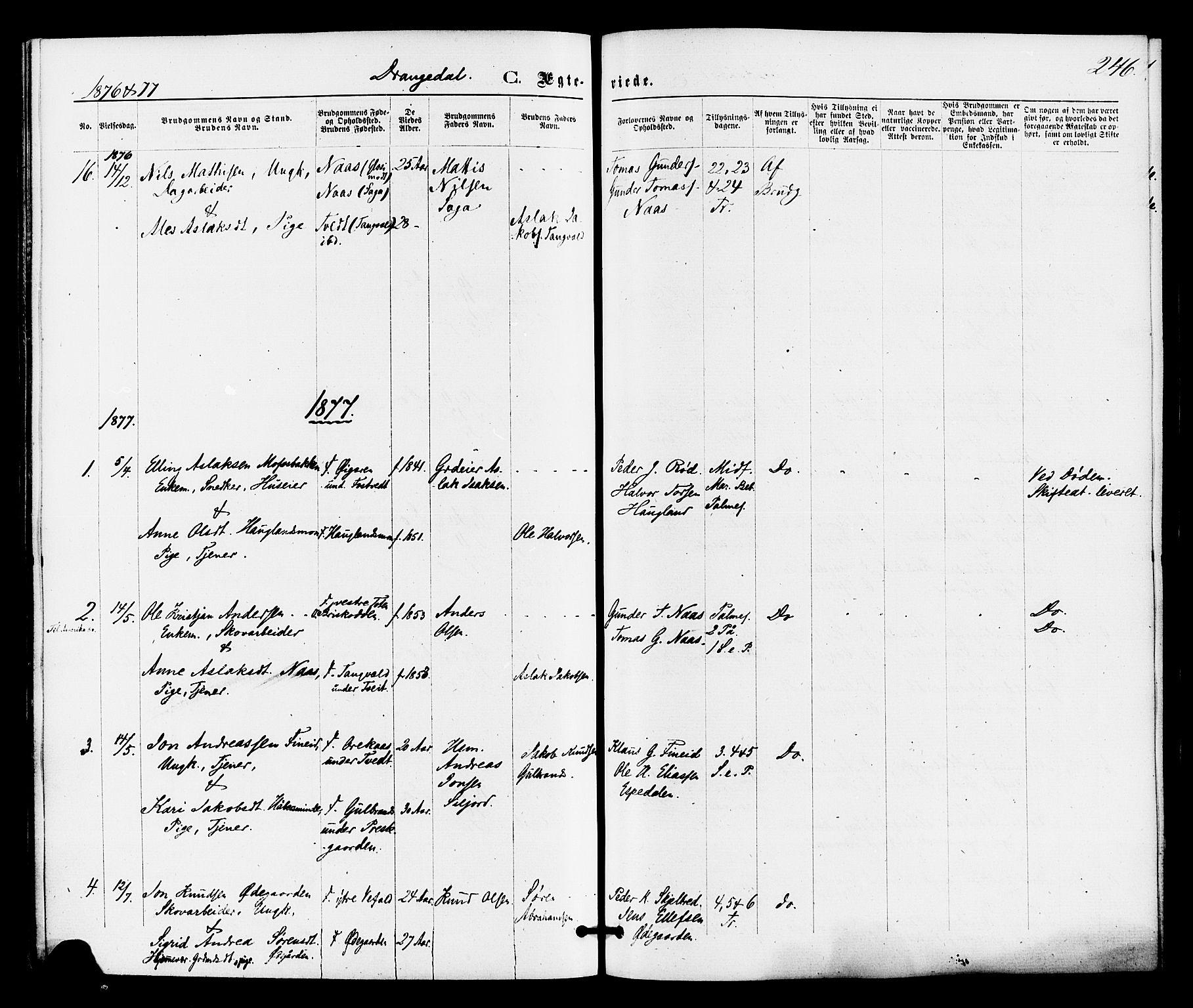 SAKO, Drangedal kirkebøker, F/Fa/L0009: Ministerialbok nr. 9 /1, 1872-1884, s. 246