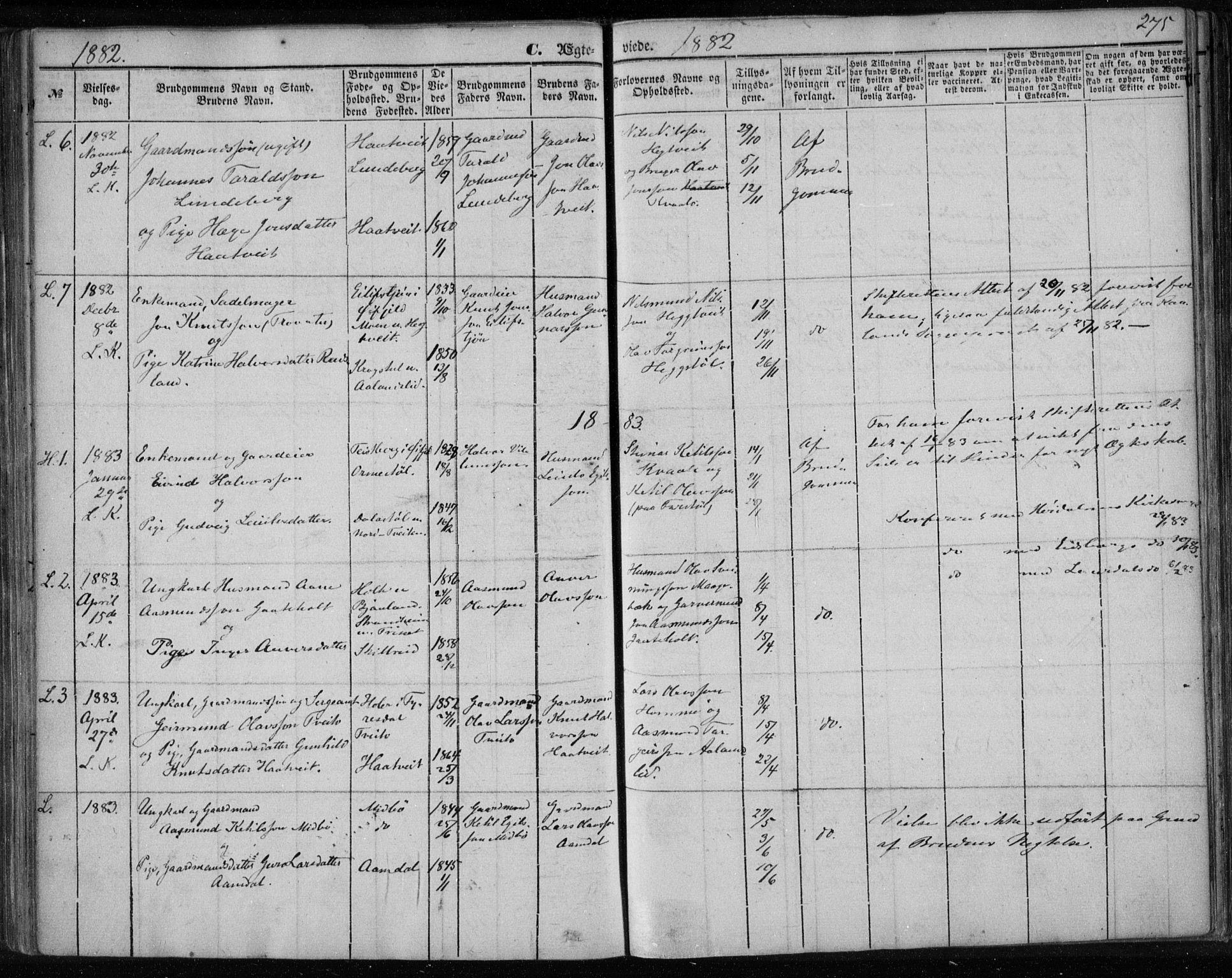 SAKO, Lårdal kirkebøker, F/Fa/L0006: Ministerialbok nr. I 6, 1861-1886, s. 275
