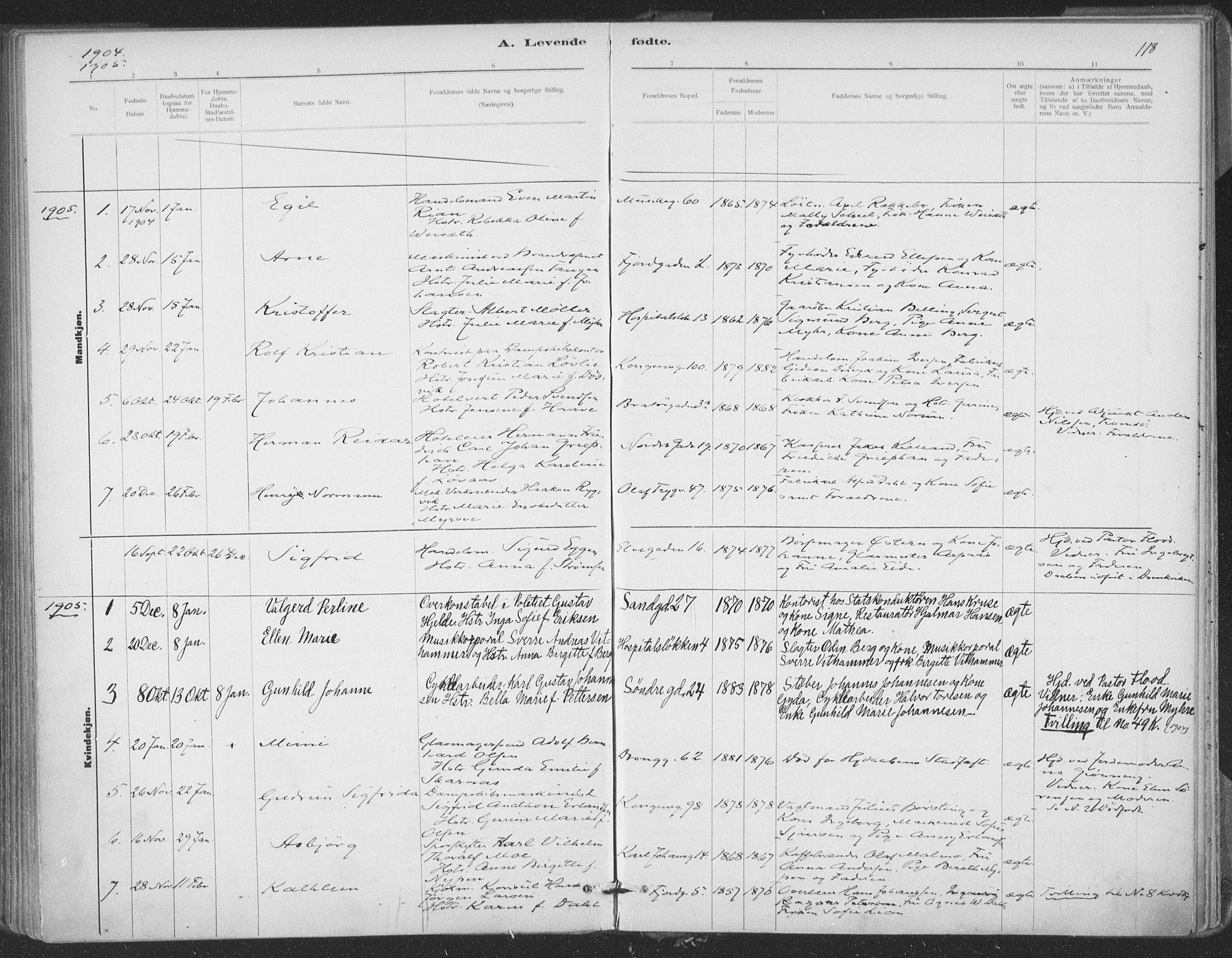 SAT, Ministerialprotokoller, klokkerbøker og fødselsregistre - Sør-Trøndelag, 602/L0122: Ministerialbok nr. 602A20, 1892-1908, s. 118