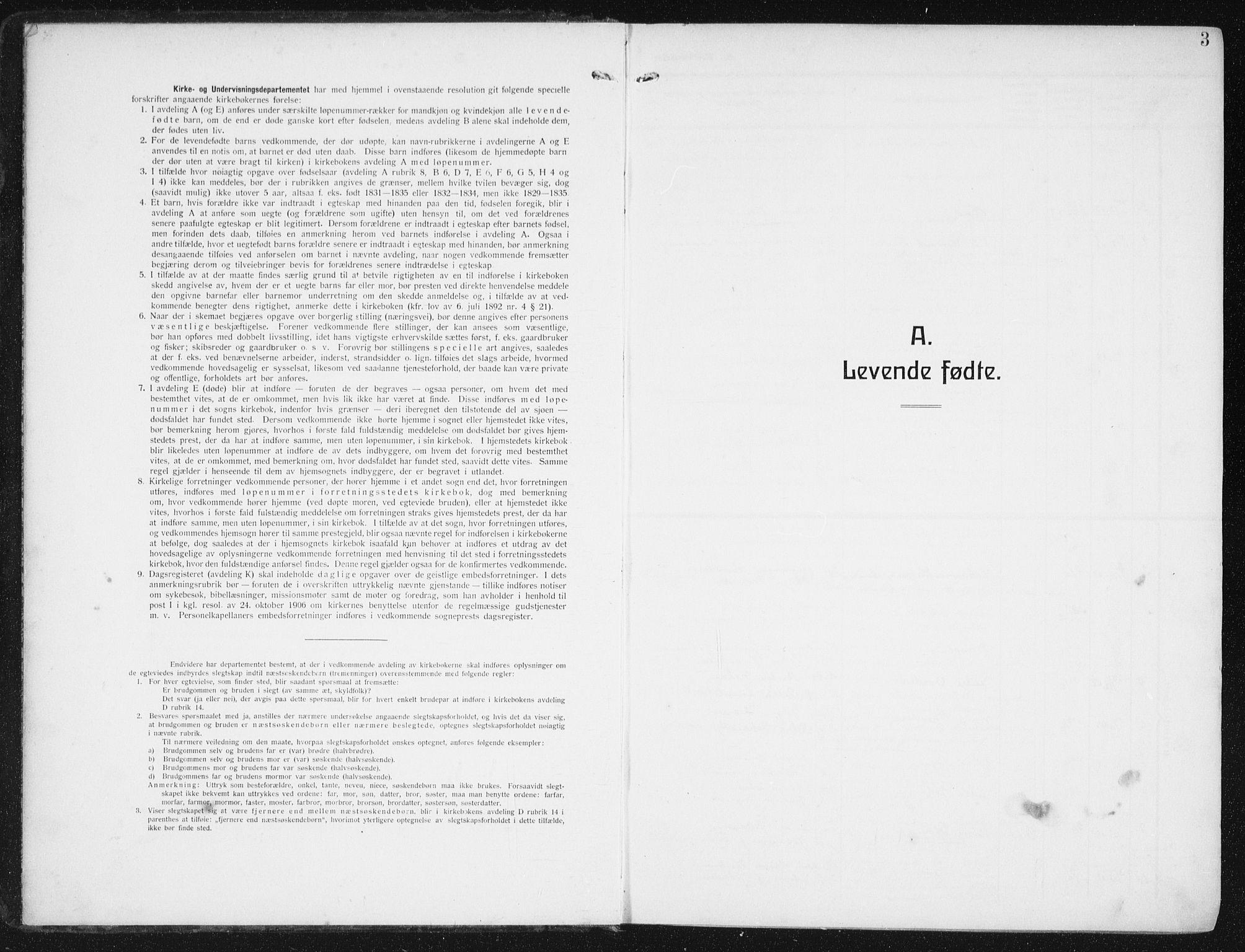 SAT, Ministerialprotokoller, klokkerbøker og fødselsregistre - Nordland, 880/L1135: Ministerialbok nr. 880A09, 1908-1919, s. 3