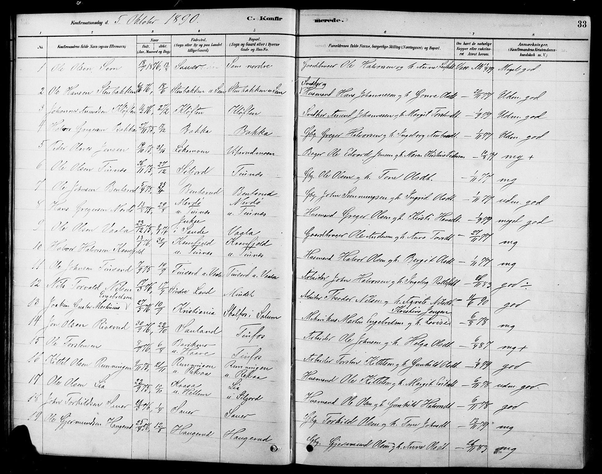 SAKO, Heddal kirkebøker, F/Fa/L0009: Ministerialbok nr. I 9, 1878-1903, s. 33