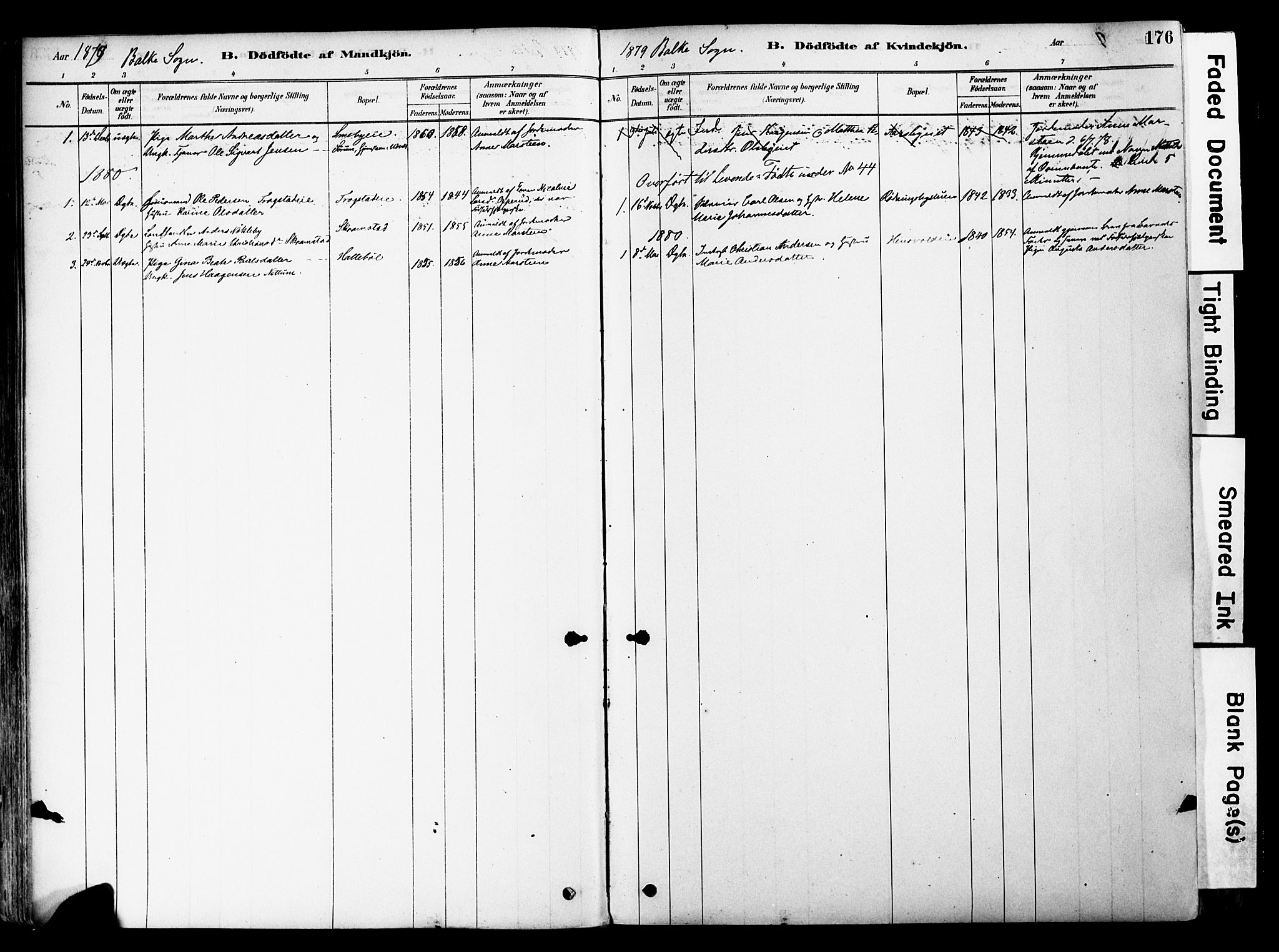 SAH, Østre Toten prestekontor, Ministerialbok nr. 6 /2, 1878-1880, s. 176