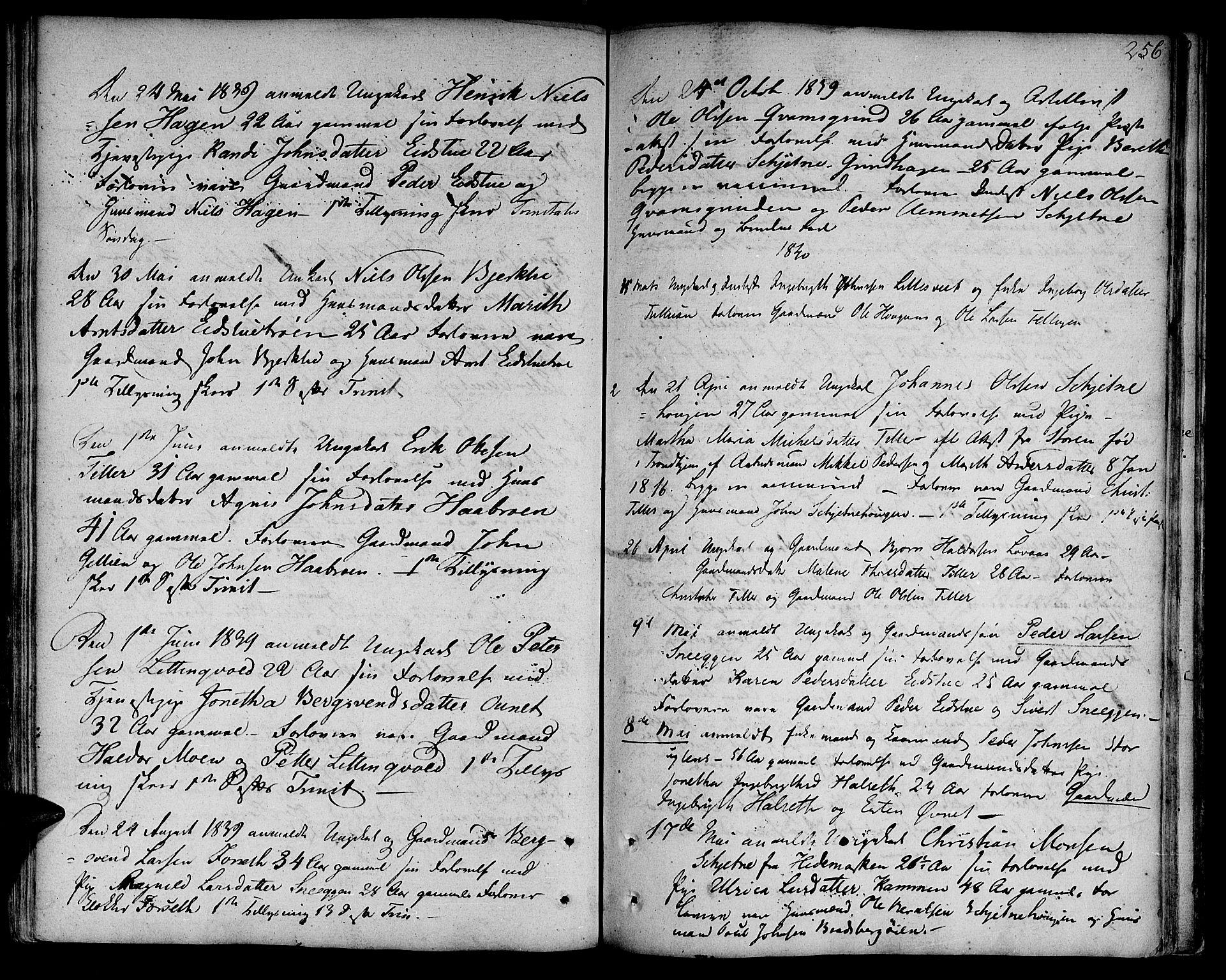 SAT, Ministerialprotokoller, klokkerbøker og fødselsregistre - Sør-Trøndelag, 618/L0438: Ministerialbok nr. 618A03, 1783-1815, s. 256