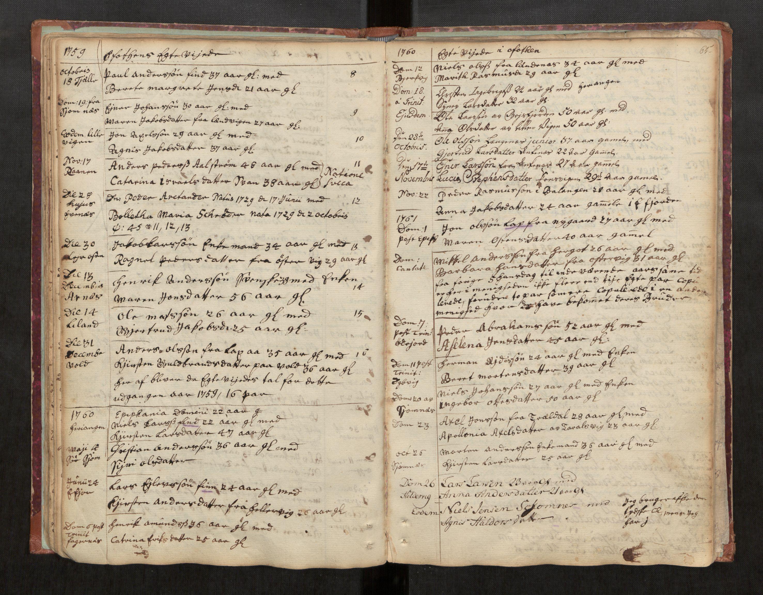 SAT, Ministerialprotokoller, klokkerbøker og fødselsregistre - Nordland, 863/L0891: Ministerialbok nr. 863A03, 1748-1764, s. 65