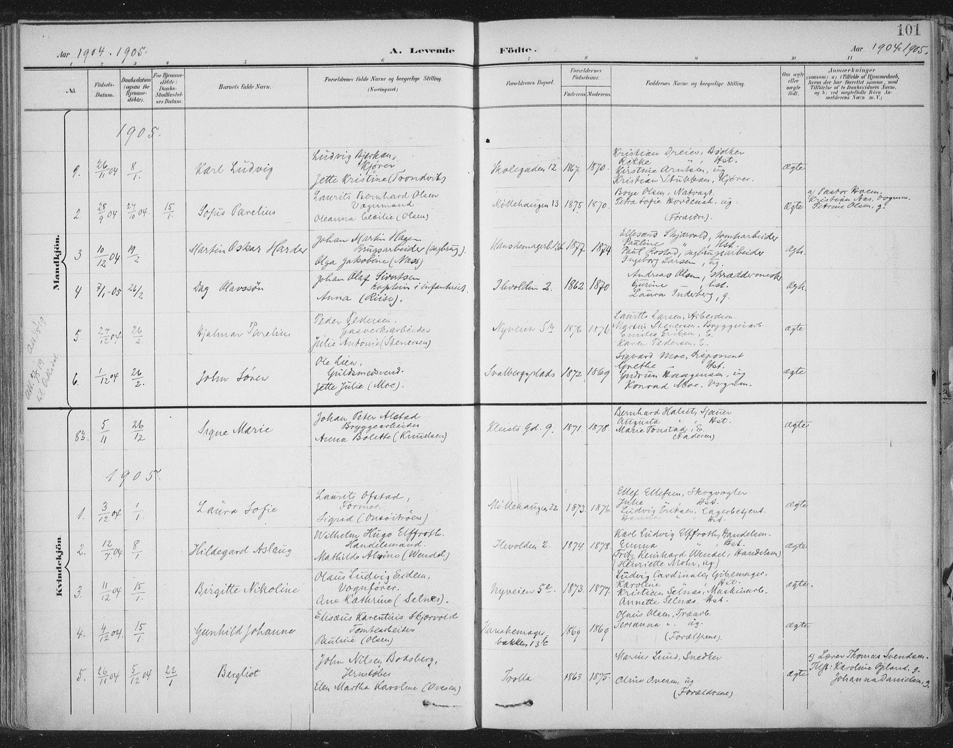 SAT, Ministerialprotokoller, klokkerbøker og fødselsregistre - Sør-Trøndelag, 603/L0167: Ministerialbok nr. 603A06, 1896-1932, s. 101