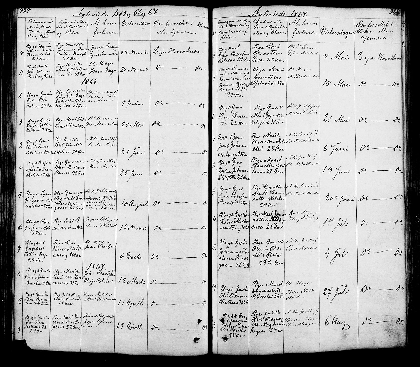 SAH, Lesja prestekontor, Klokkerbok nr. 5, 1850-1894, s. 324-325