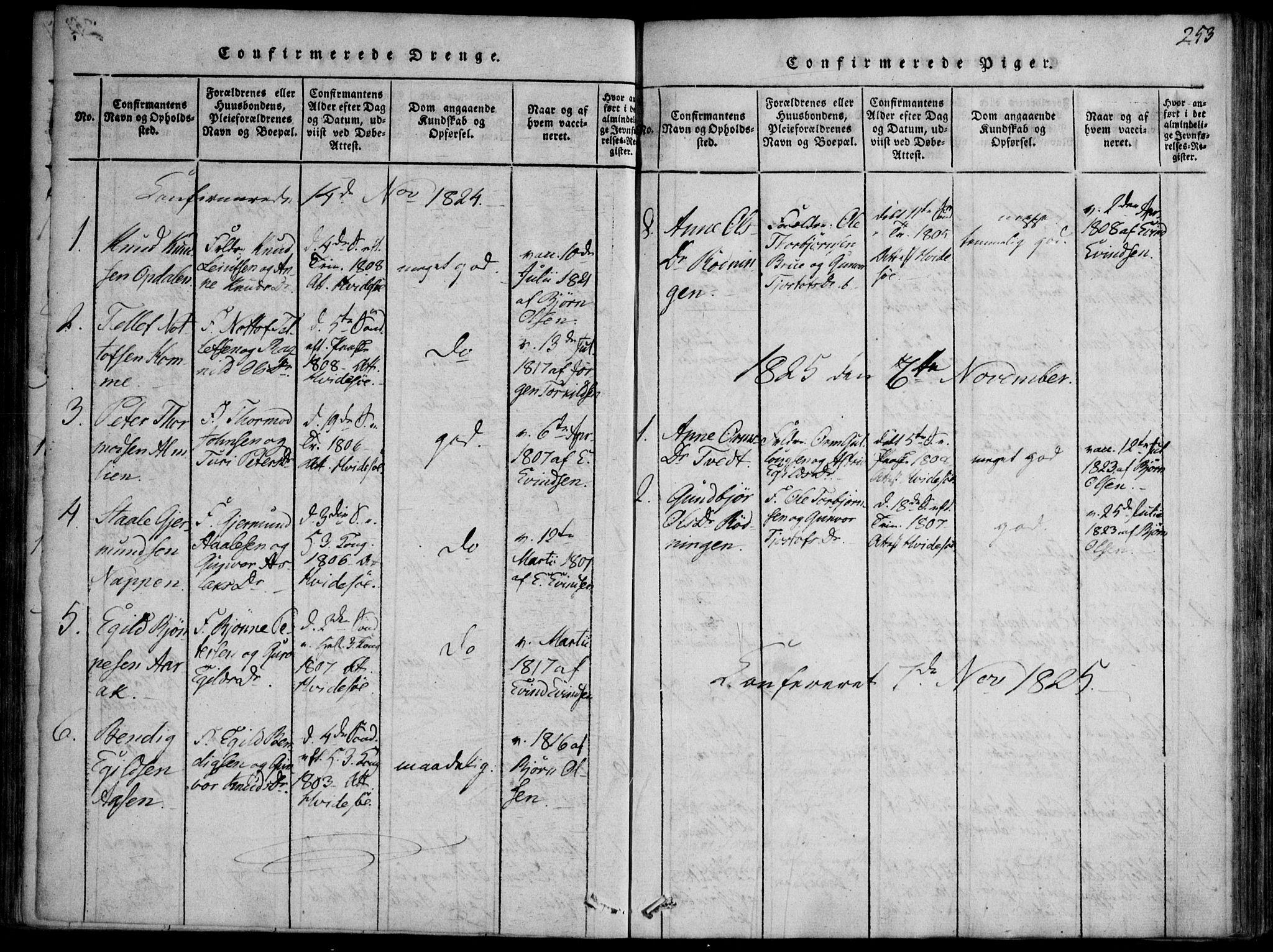 SAKO, Nissedal kirkebøker, F/Fb/L0001: Ministerialbok nr. II 1, 1814-1845, s. 253
