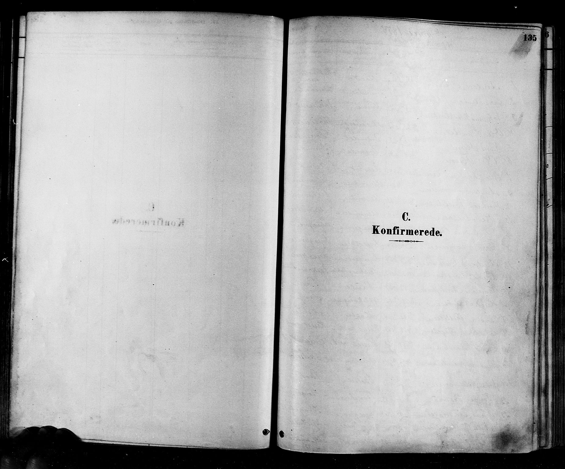 SAKO, Eiker kirkebøker, F/Fb/L0001: Ministerialbok nr. II 1, 1878-1888, s. 135