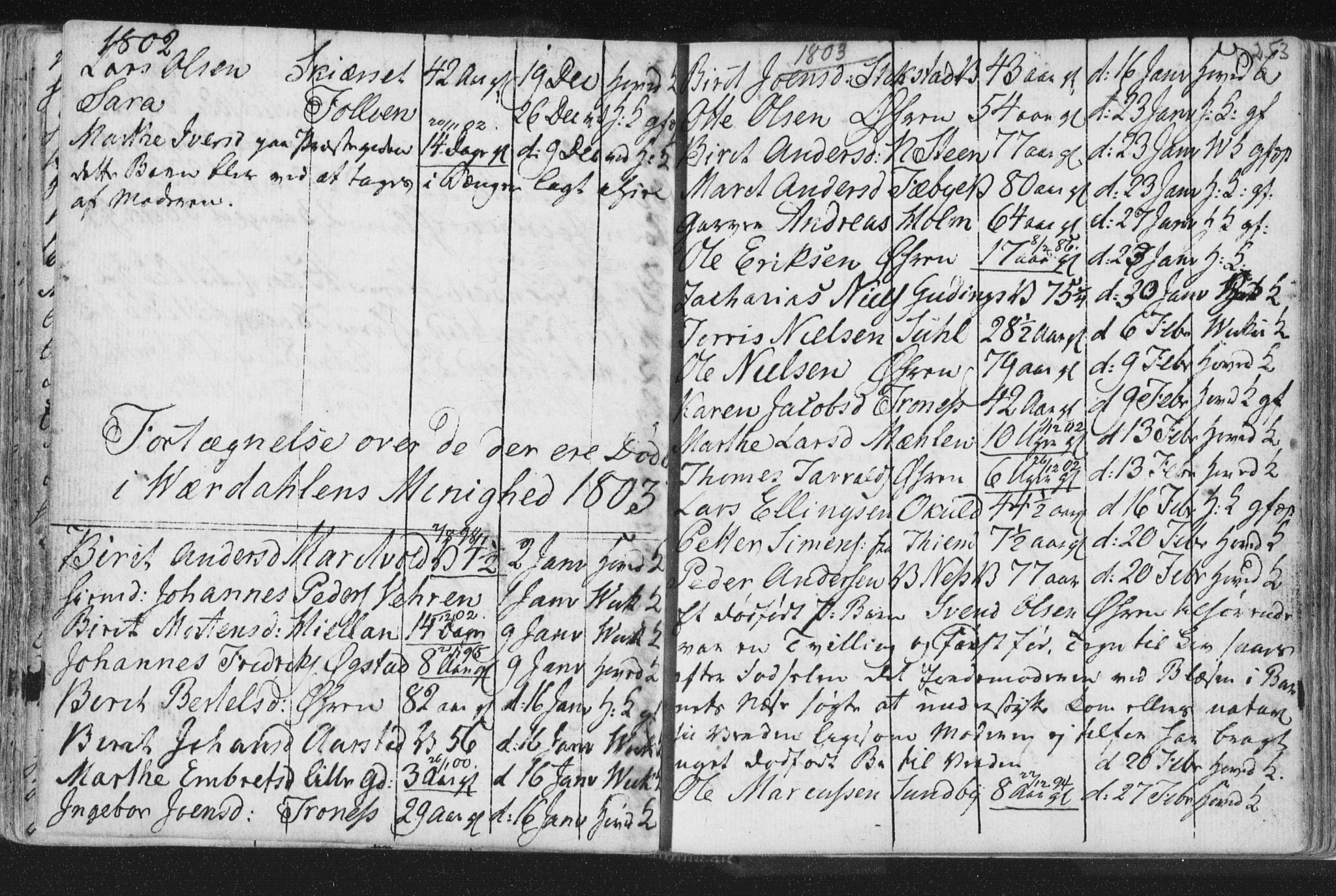 SAT, Ministerialprotokoller, klokkerbøker og fødselsregistre - Nord-Trøndelag, 723/L0232: Ministerialbok nr. 723A03, 1781-1804, s. 253