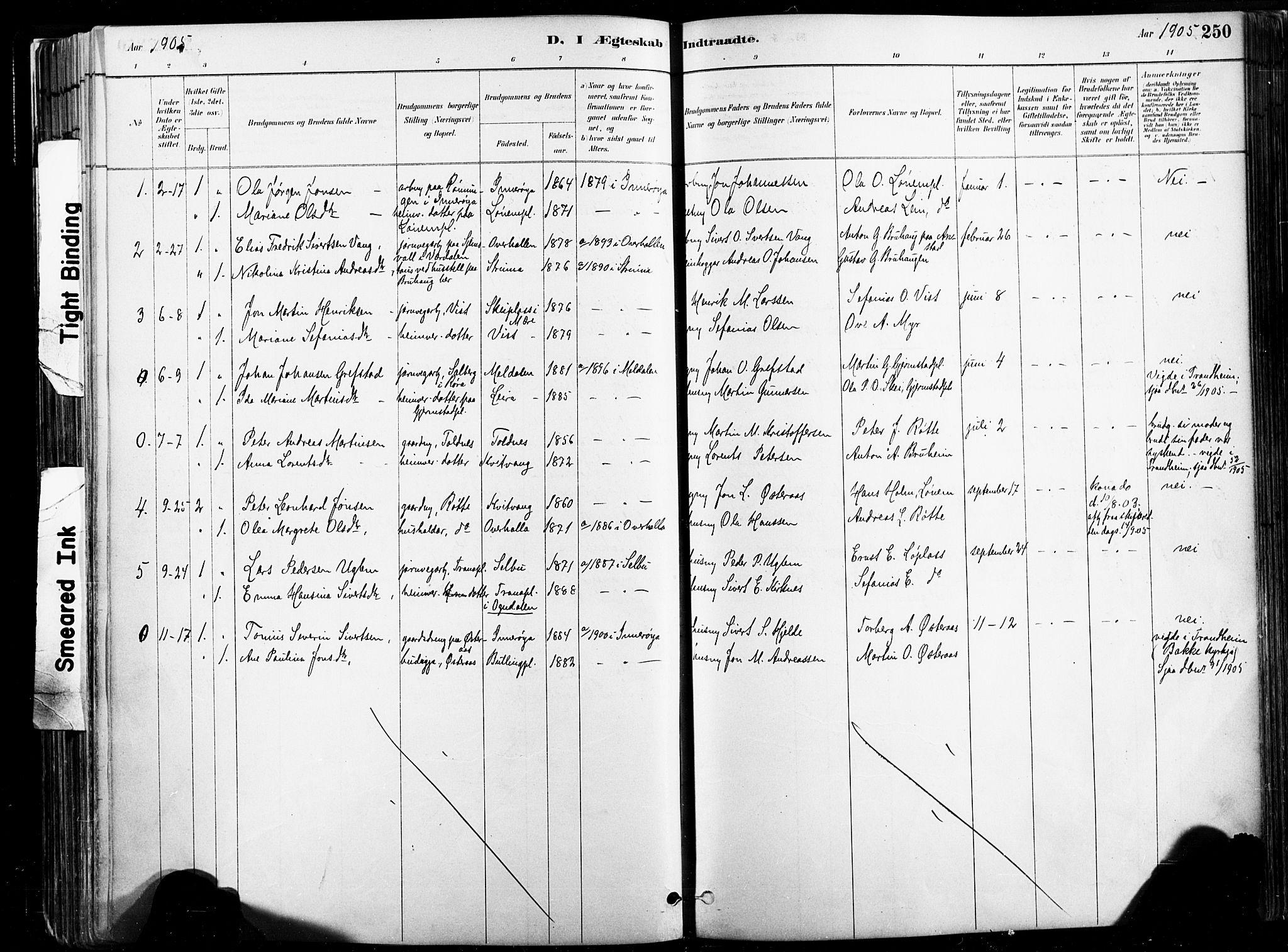 SAT, Ministerialprotokoller, klokkerbøker og fødselsregistre - Nord-Trøndelag, 735/L0351: Ministerialbok nr. 735A10, 1884-1908, s. 250