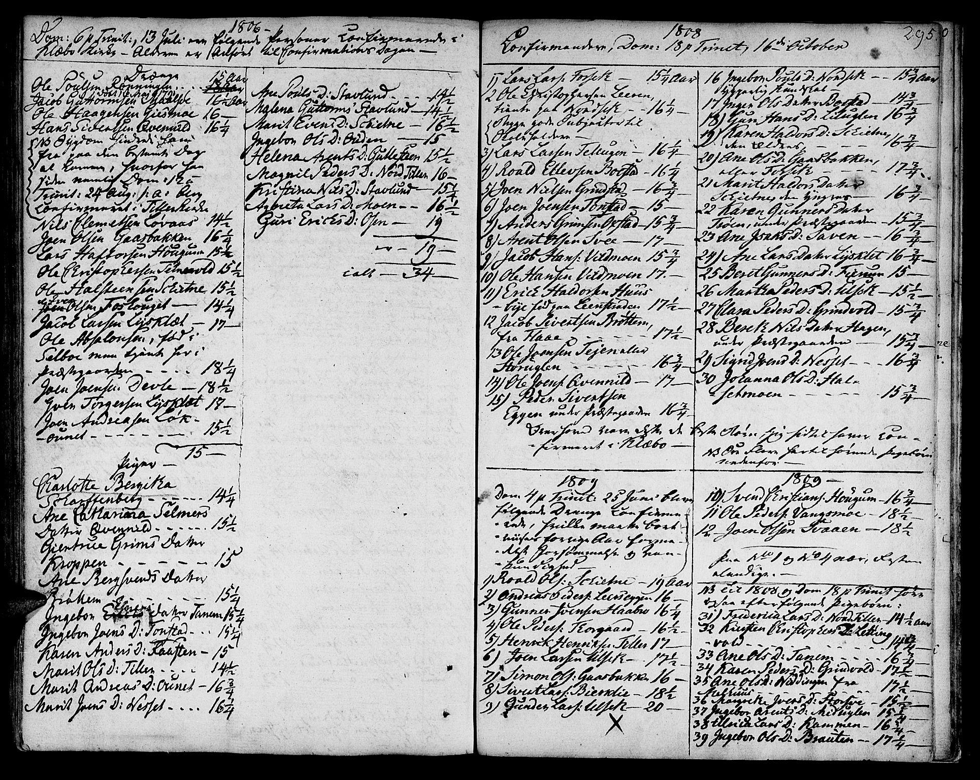 SAT, Ministerialprotokoller, klokkerbøker og fødselsregistre - Sør-Trøndelag, 618/L0438: Ministerialbok nr. 618A03, 1783-1815, s. 295
