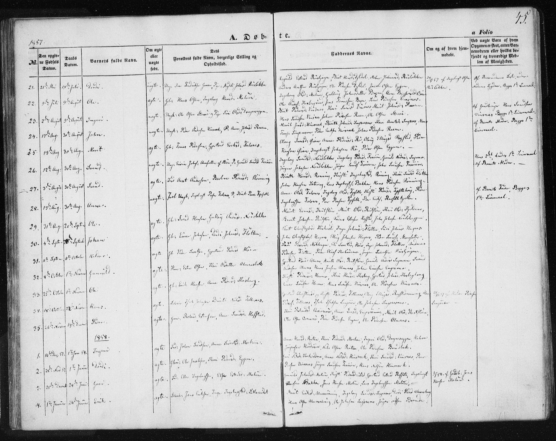 SAT, Ministerialprotokoller, klokkerbøker og fødselsregistre - Sør-Trøndelag, 685/L0964: Ministerialbok nr. 685A06 /2, 1846-1859, s. 45