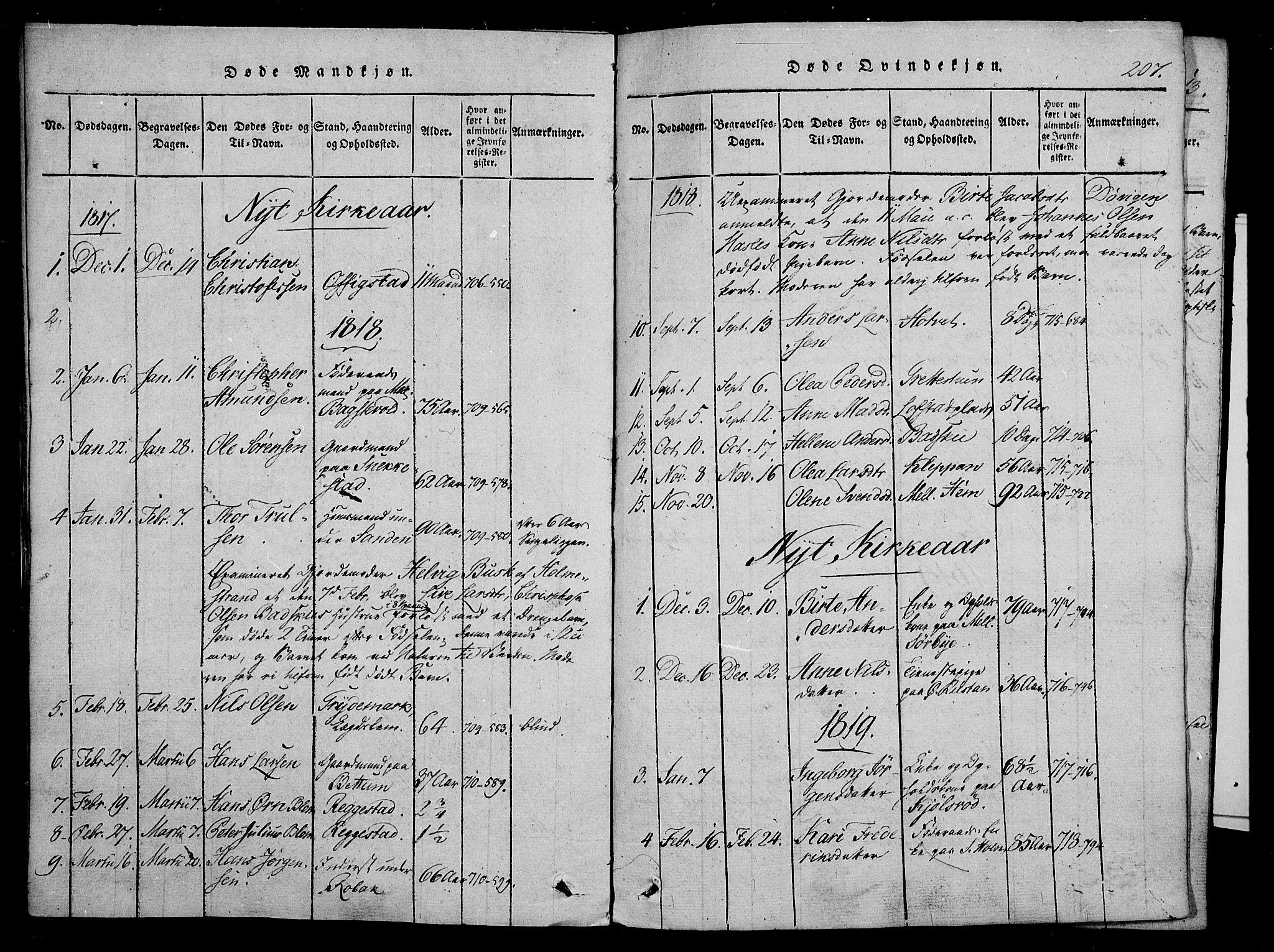 SAKO, Våle kirkebøker, F/Fa/L0007: Ministerialbok nr. I 7, 1814-1824, s. 206-207