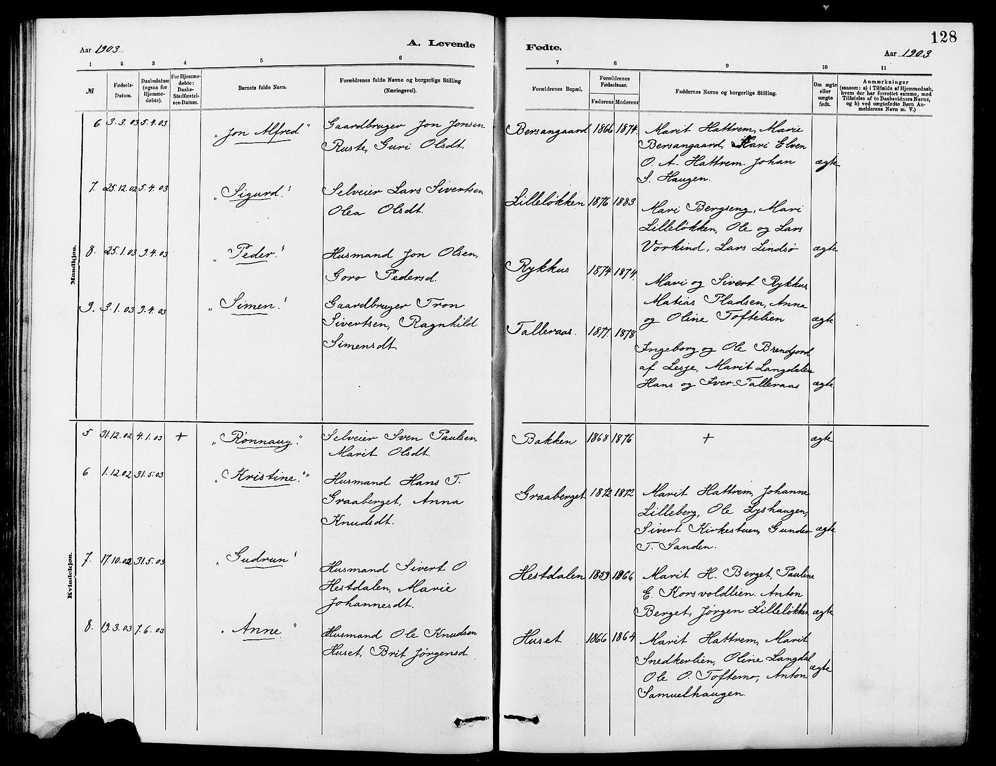 SAH, Dovre prestekontor, Klokkerbok nr. 2, 1881-1907, s. 128
