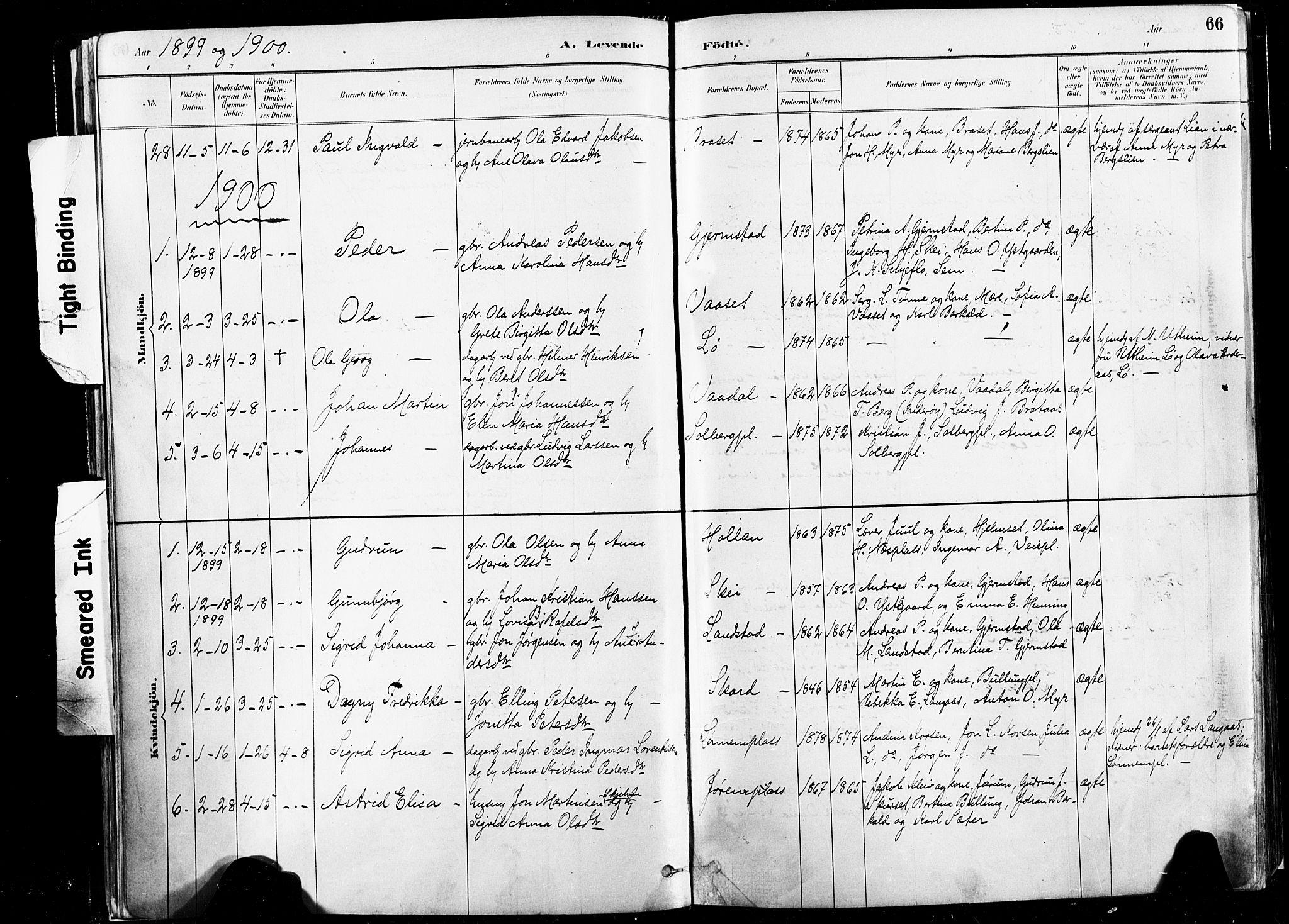 SAT, Ministerialprotokoller, klokkerbøker og fødselsregistre - Nord-Trøndelag, 735/L0351: Ministerialbok nr. 735A10, 1884-1908, s. 66