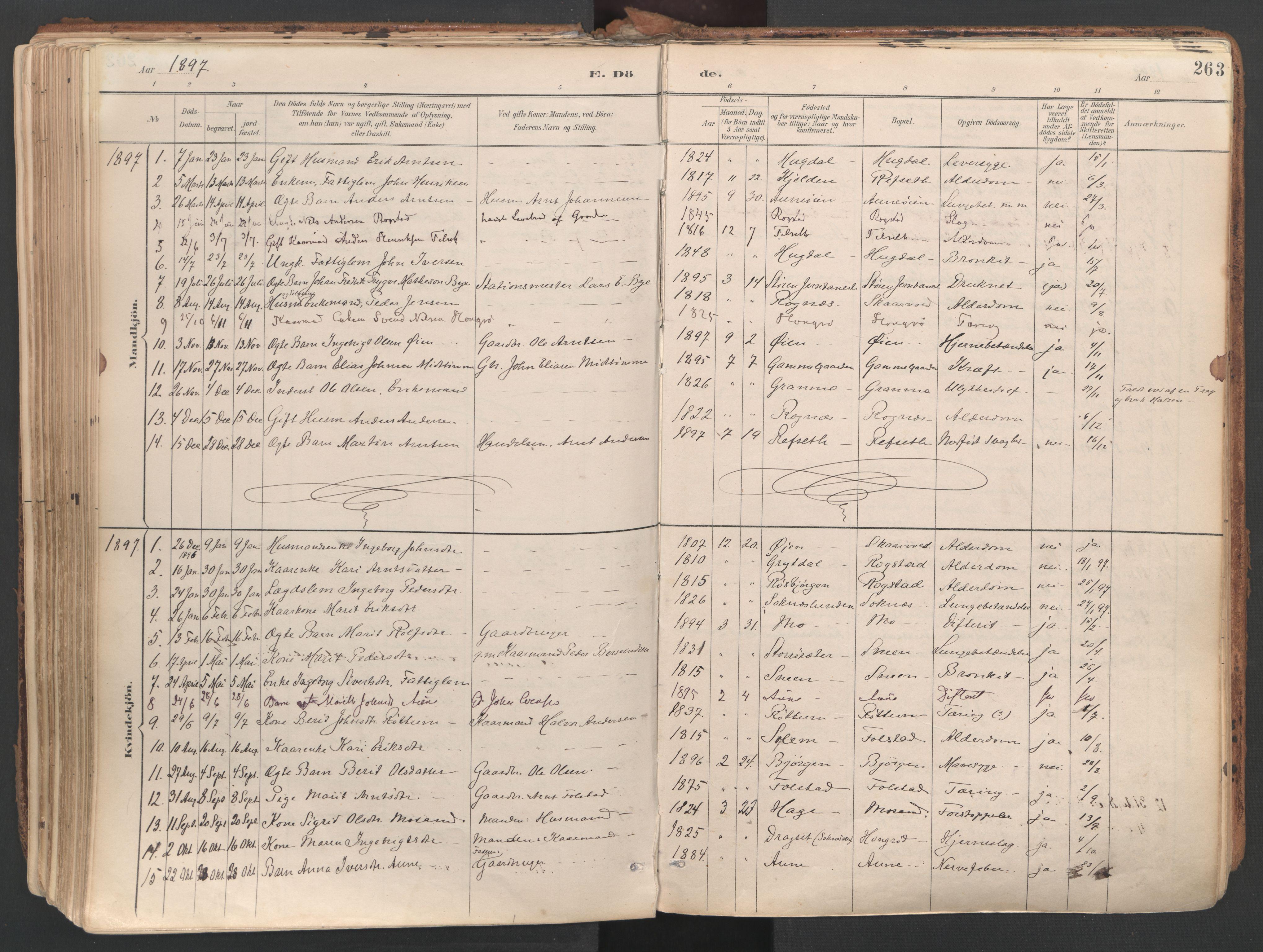 SAT, Ministerialprotokoller, klokkerbøker og fødselsregistre - Sør-Trøndelag, 687/L1004: Ministerialbok nr. 687A10, 1891-1923, s. 263