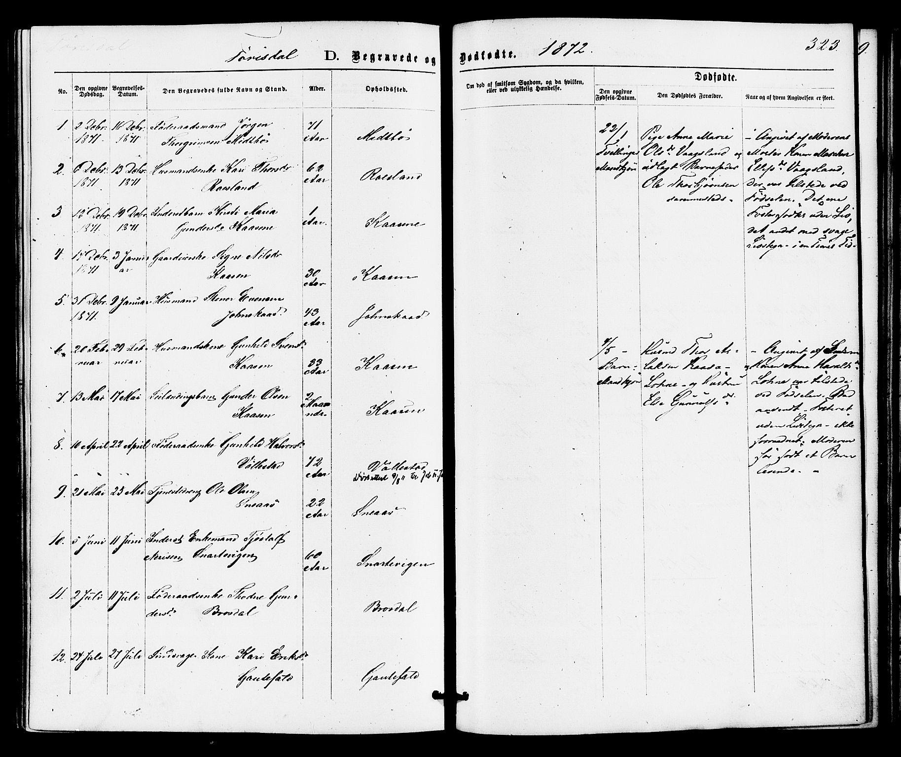 SAKO, Drangedal kirkebøker, F/Fa/L0009: Ministerialbok nr. 9 /2, 1872-1884, s. 323