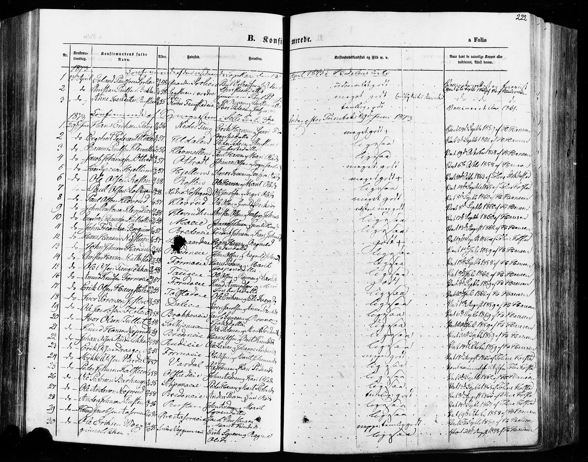 SAH, Vågå prestekontor, Ministerialbok nr. 7 /1, 1872-1886, s. 222