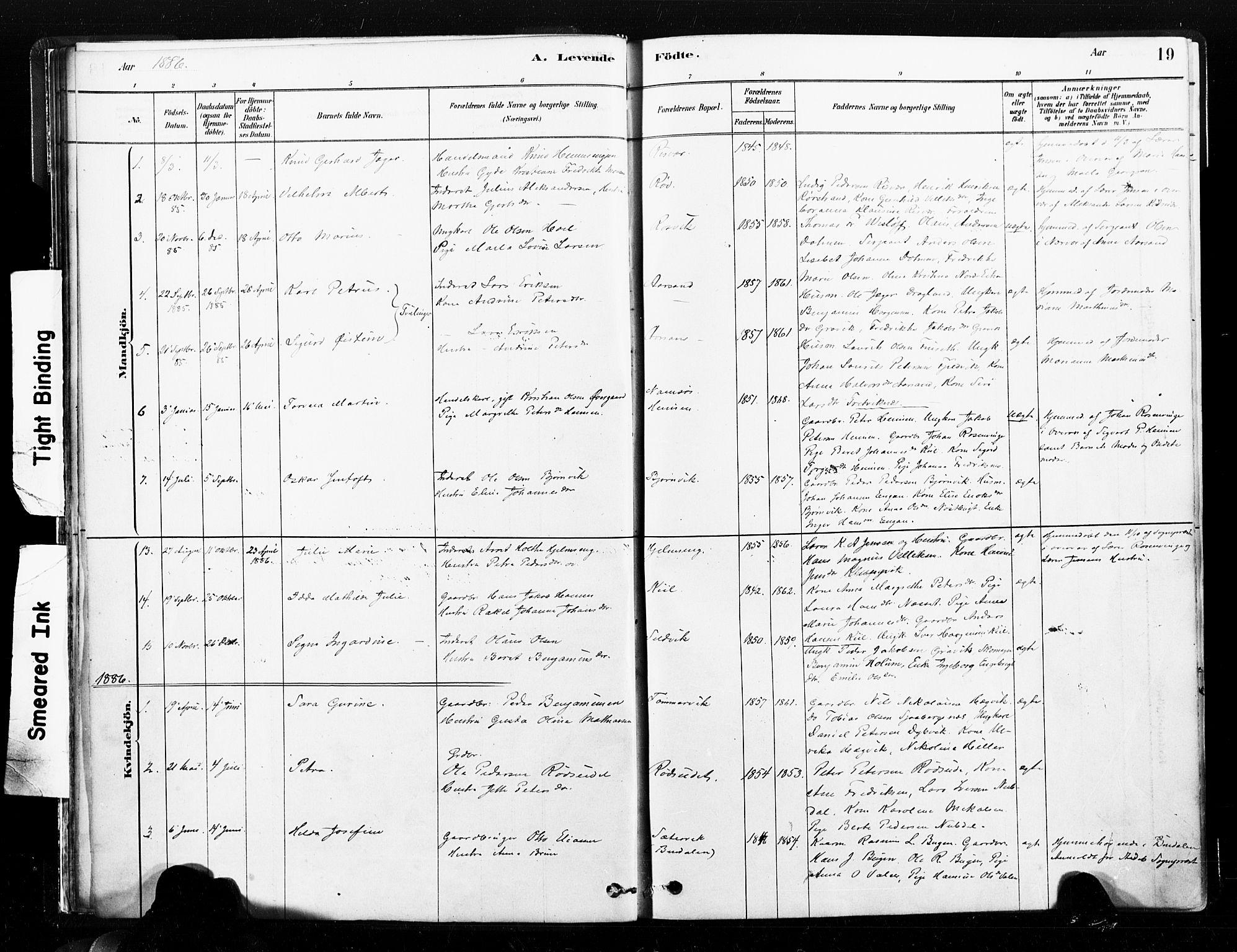 SAT, Ministerialprotokoller, klokkerbøker og fødselsregistre - Nord-Trøndelag, 789/L0705: Ministerialbok nr. 789A01, 1878-1910, s. 19