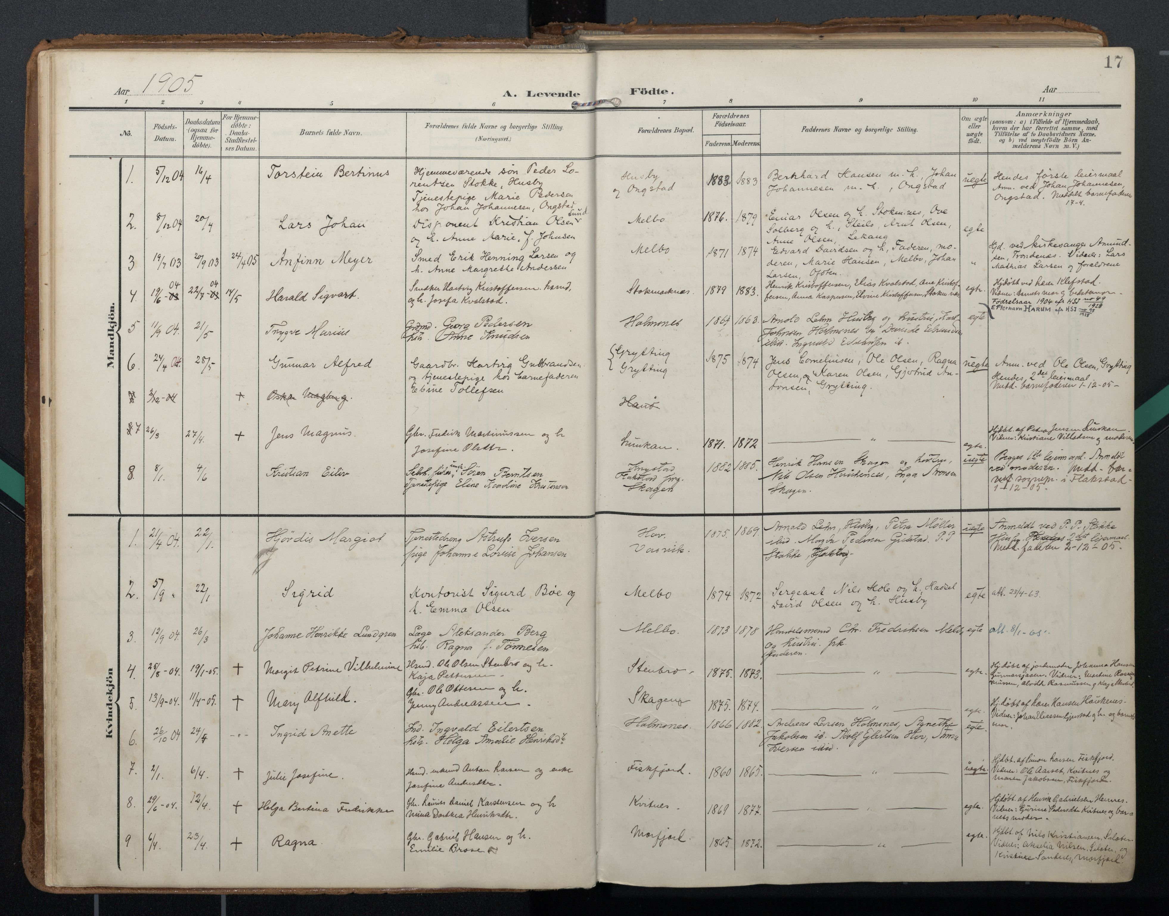 SAT, Ministerialprotokoller, klokkerbøker og fødselsregistre - Nordland, 888/L1248: Ministerialbok nr. 888A14, 1904-1913, s. 17