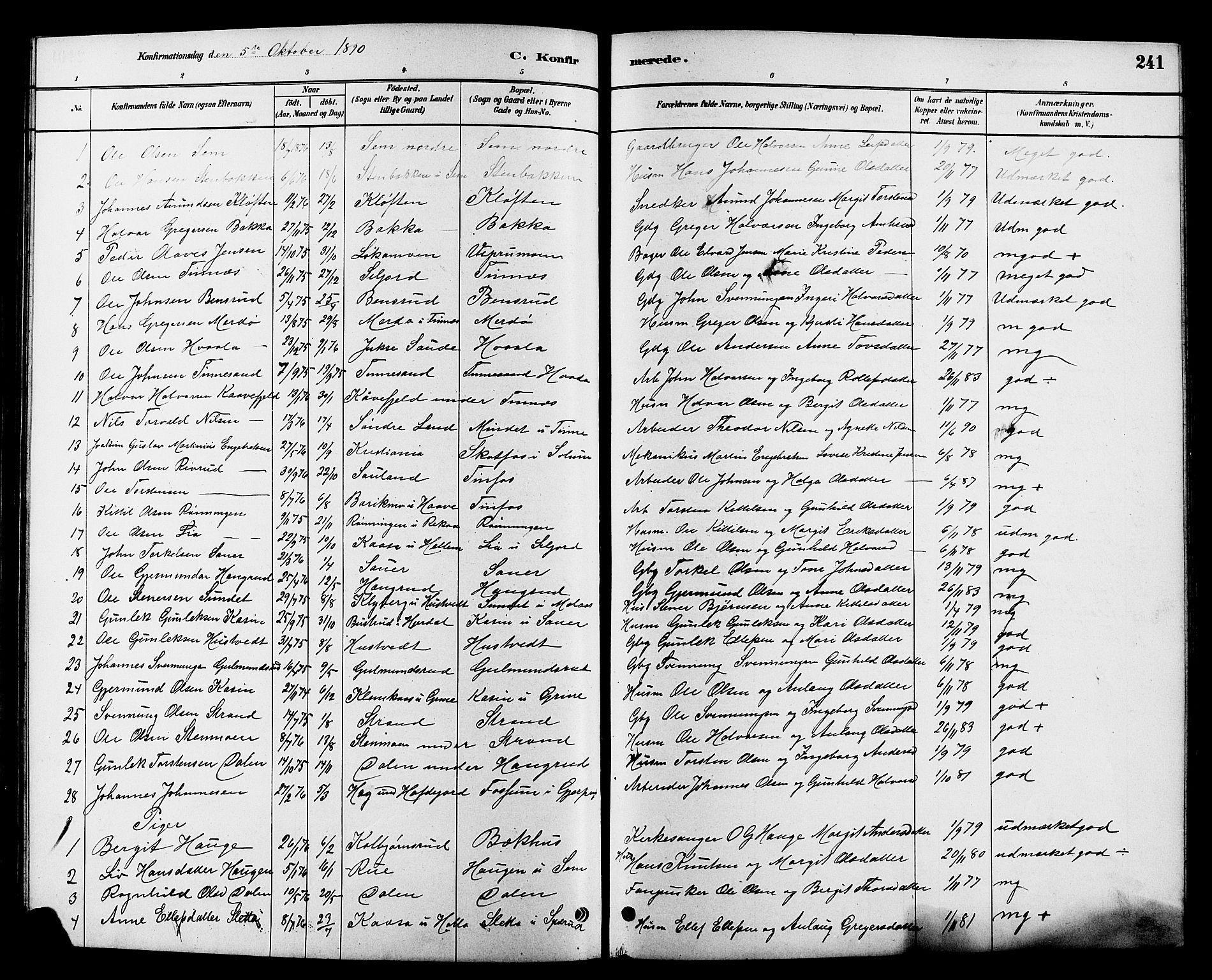 SAKO, Heddal kirkebøker, G/Ga/L0002: Klokkerbok nr. I 2, 1879-1908, s. 241
