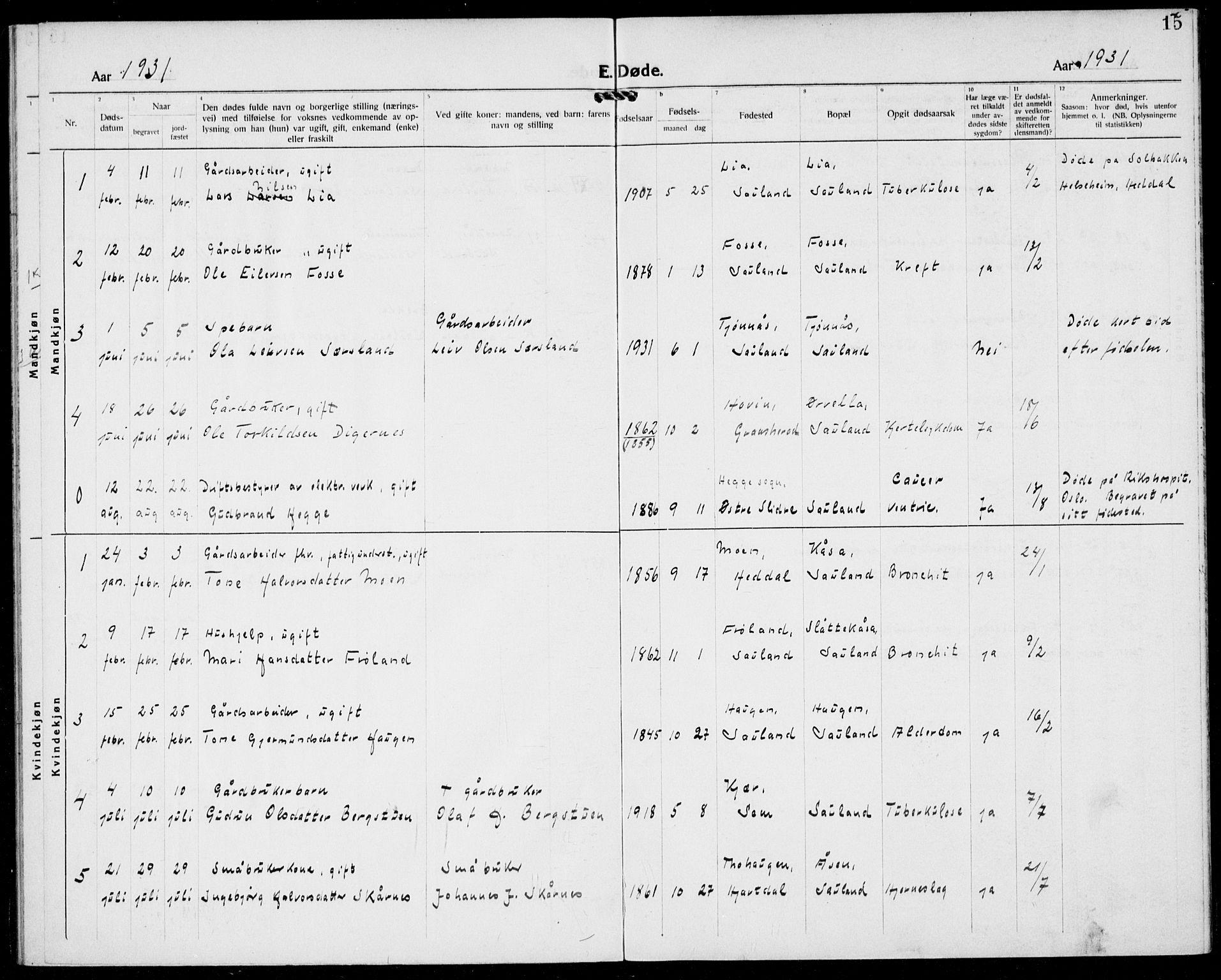 SAKO, Hjartdal kirkebøker, F/Fb/L0002: Ministerialbok nr. II 2, 1880-1932, s. 15