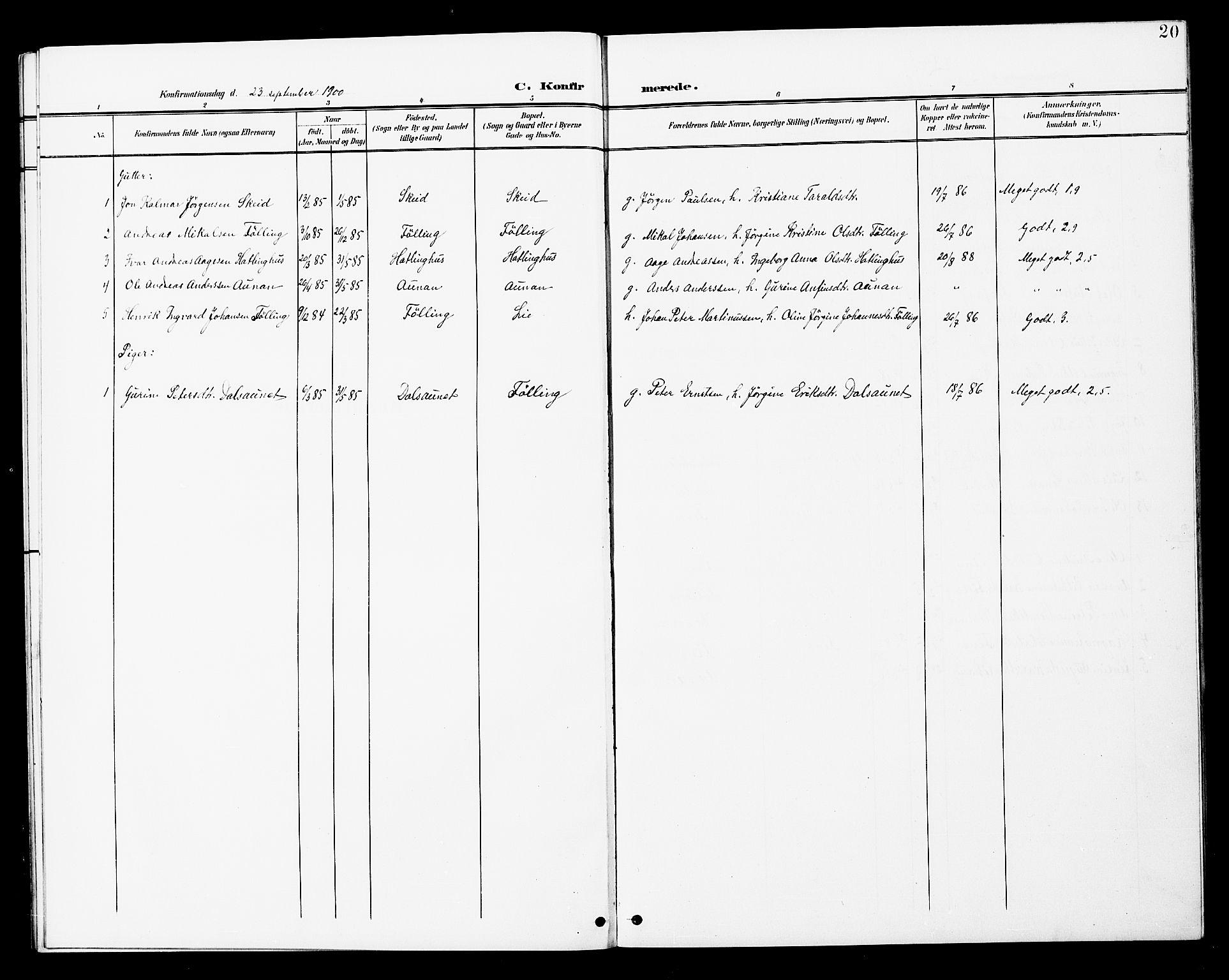 SAT, Ministerialprotokoller, klokkerbøker og fødselsregistre - Nord-Trøndelag, 748/L0464: Ministerialbok nr. 748A01, 1900-1908, s. 20