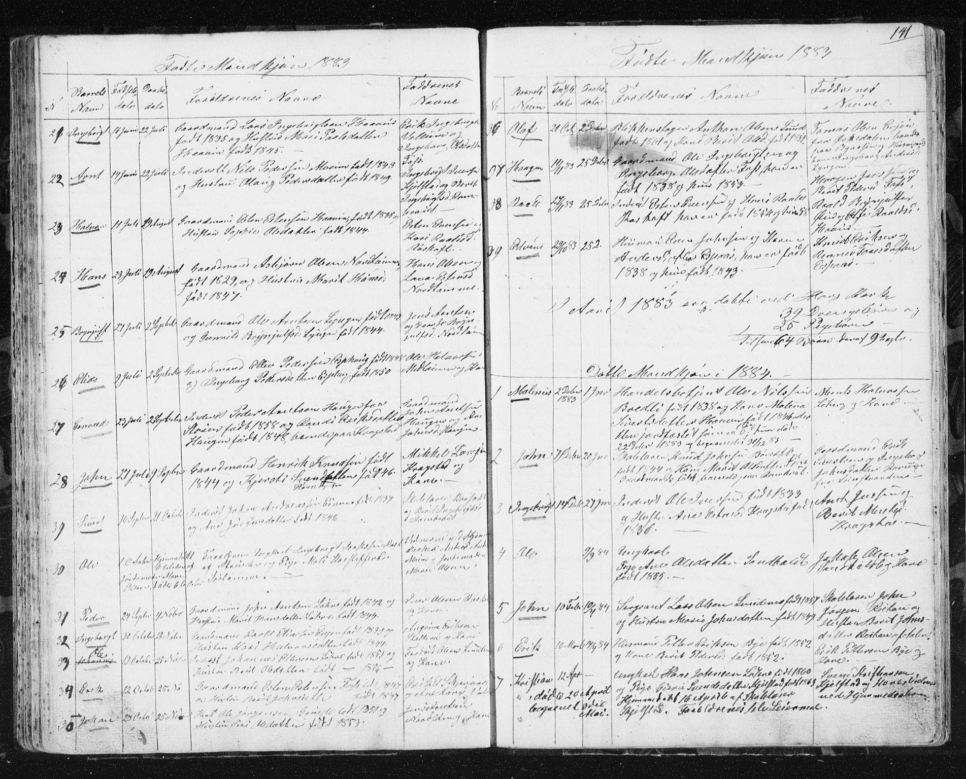 SAT, Ministerialprotokoller, klokkerbøker og fødselsregistre - Sør-Trøndelag, 692/L1110: Klokkerbok nr. 692C05, 1849-1889, s. 141